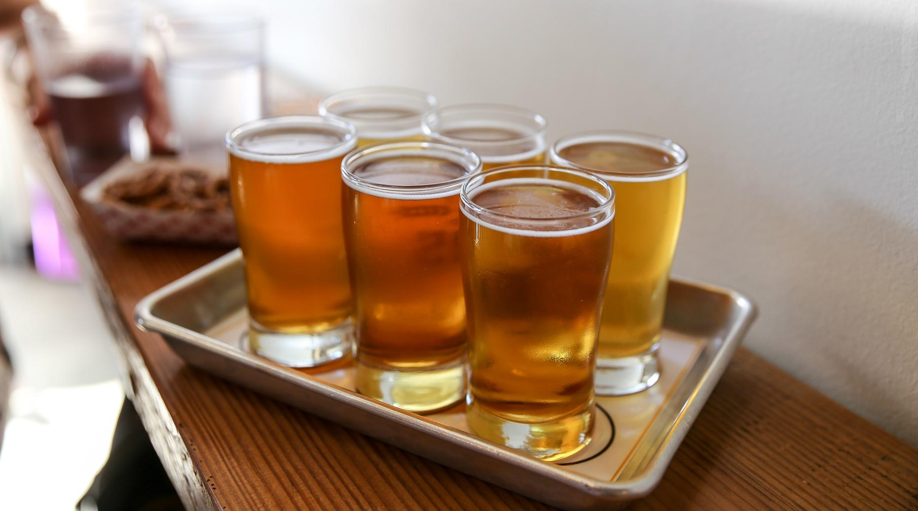 Guided Brewery Tour in Longmont