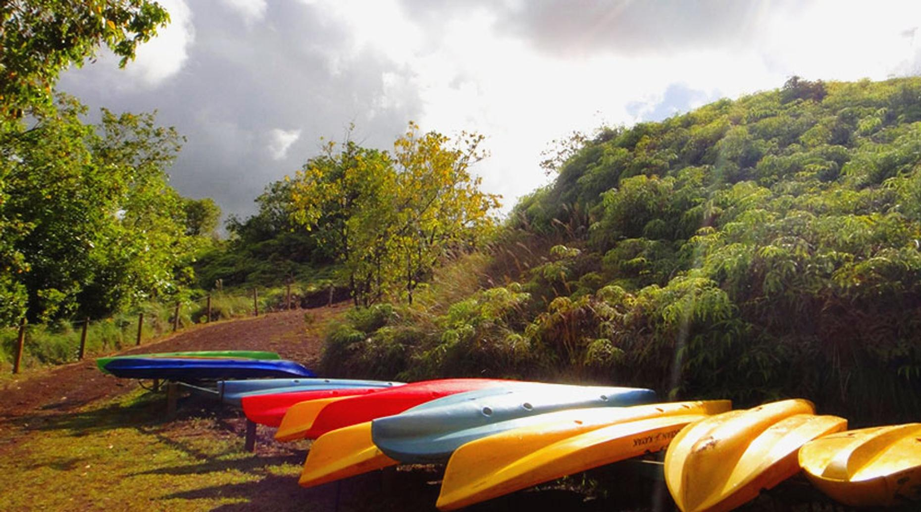 Two-Day Kayak Roll Class in Charleston