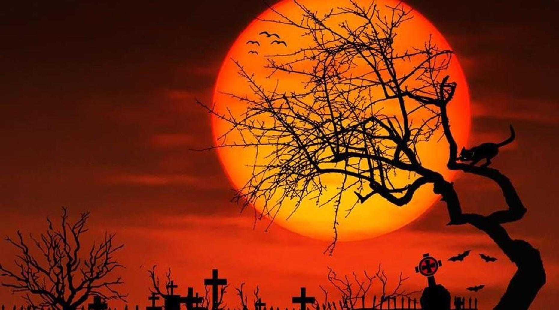 Oakwood Cemetery Ghost Tour