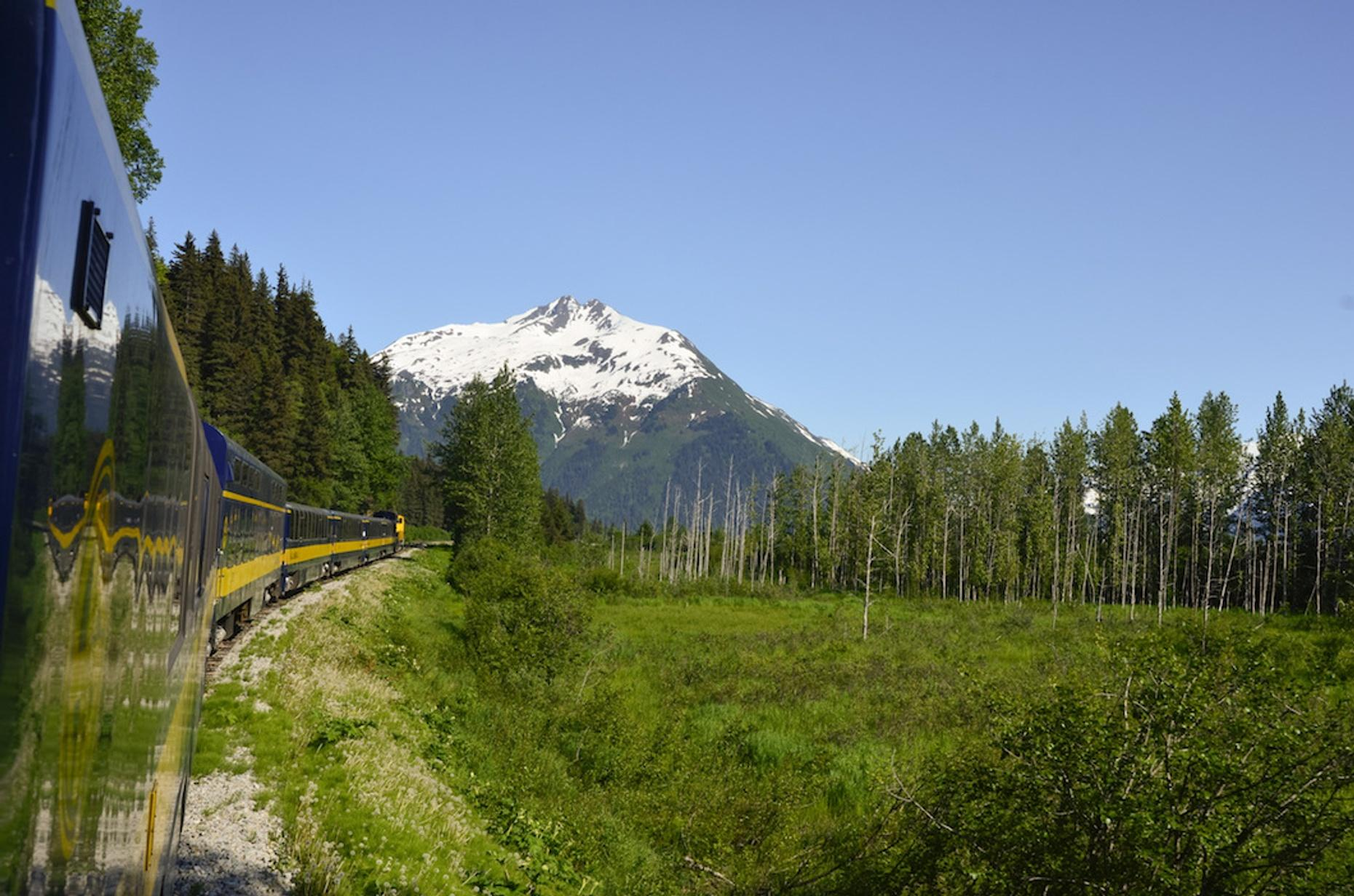 Biking & Driving Tour with Train Ride from Anchorage