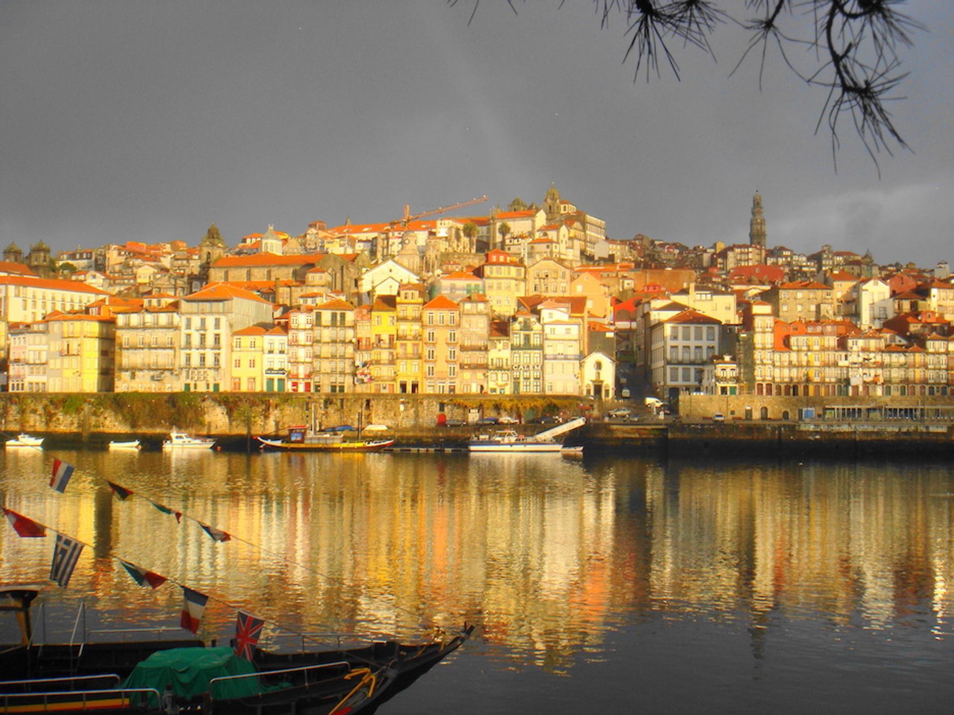 Guided Morning Walking Tour of Porto