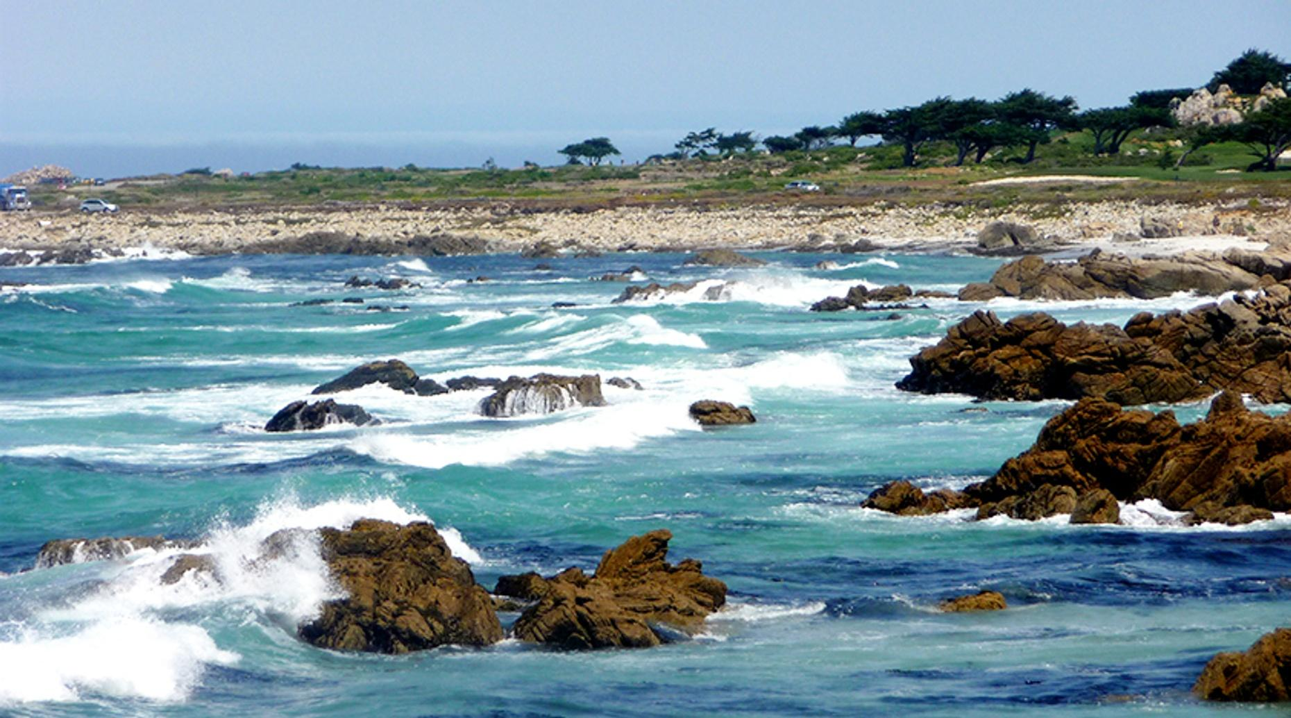 Monterey & Carmel Highway One Tour
