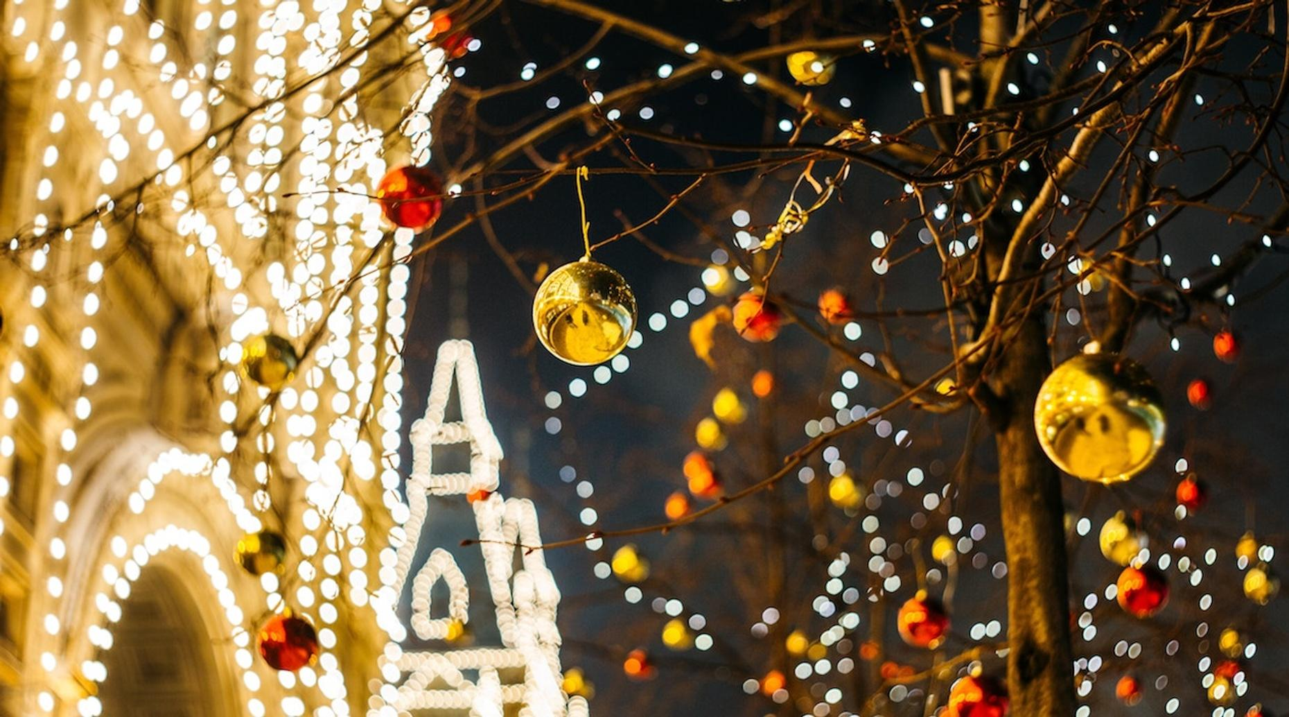 Holiday Lights Tour in Downtown Raleigh