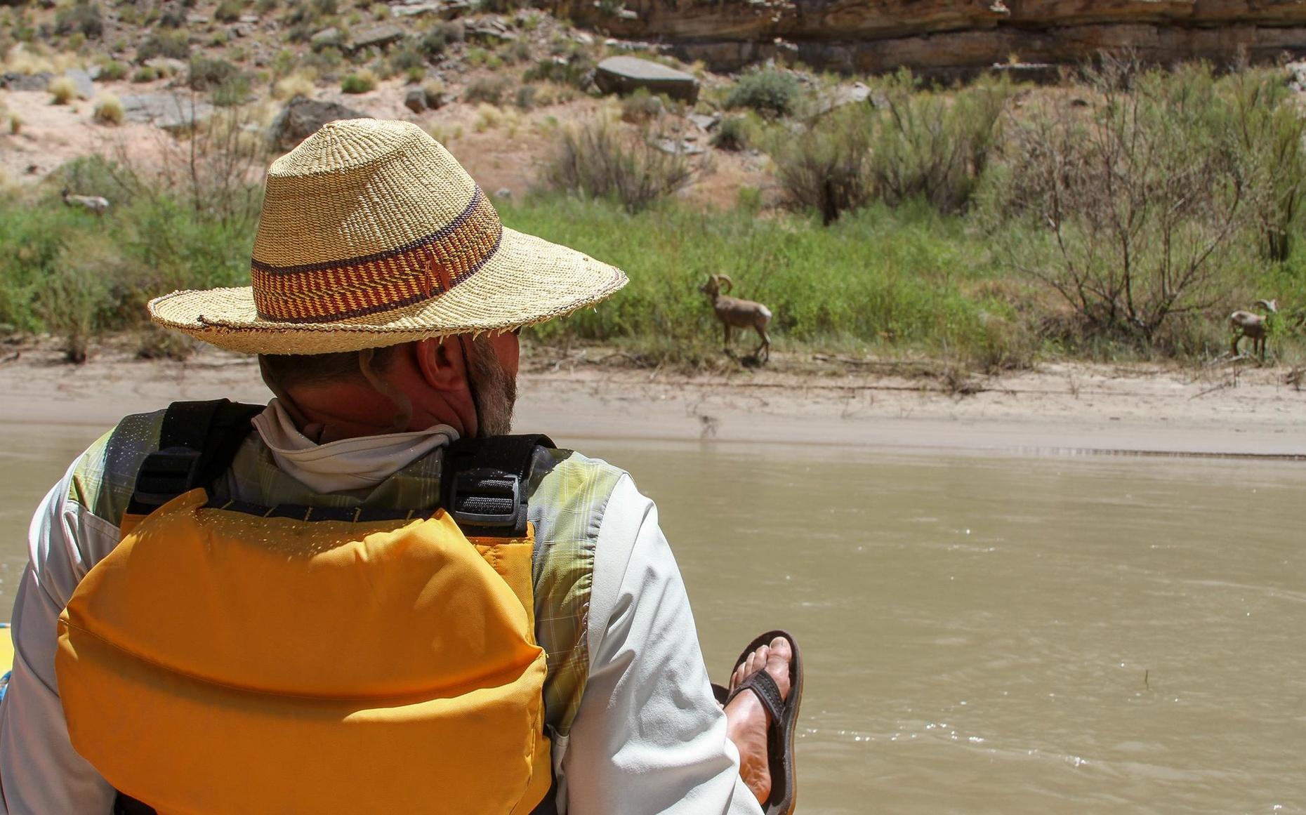 4-Day San Juan River Float
