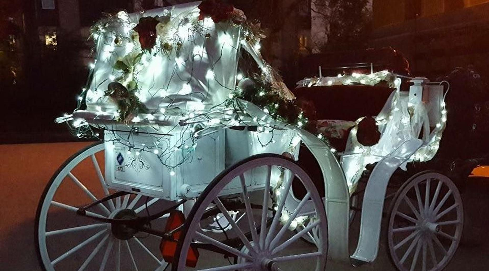 2-4 Passenger Christmas Carriage Tour in Highland Park