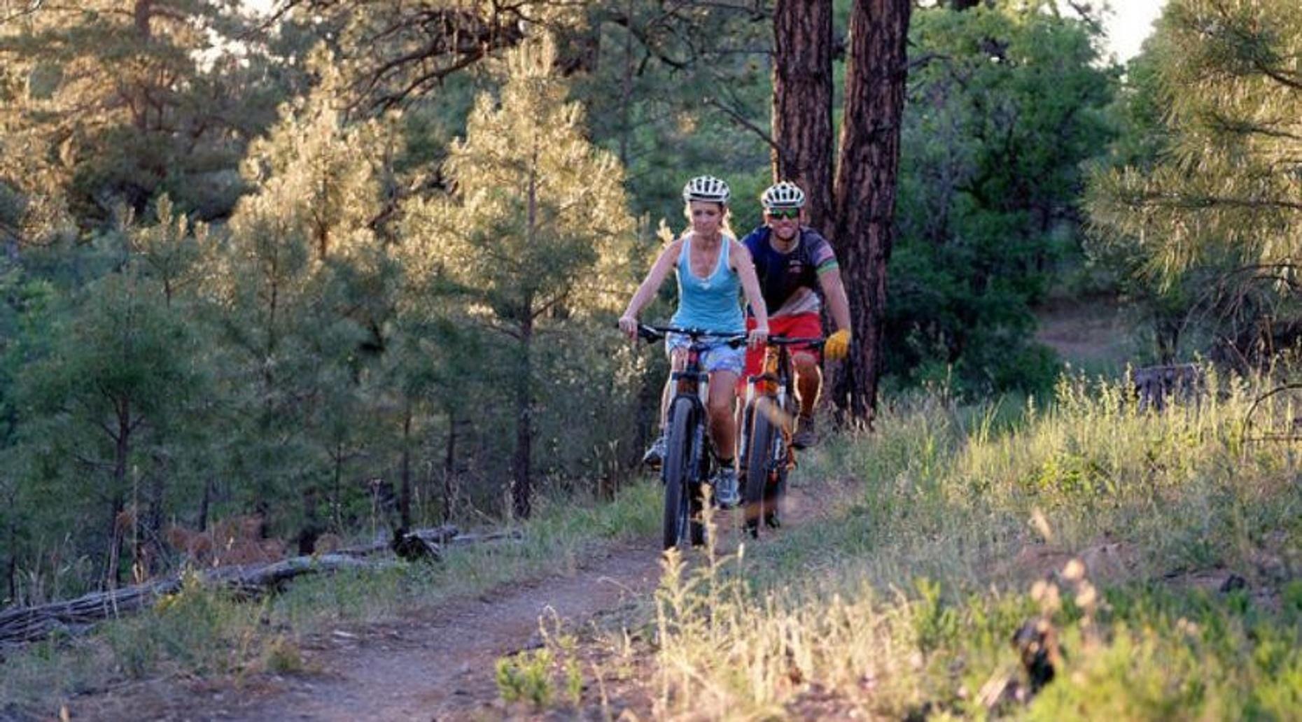 Half-Day Mountain Biking in CottonWood Valley