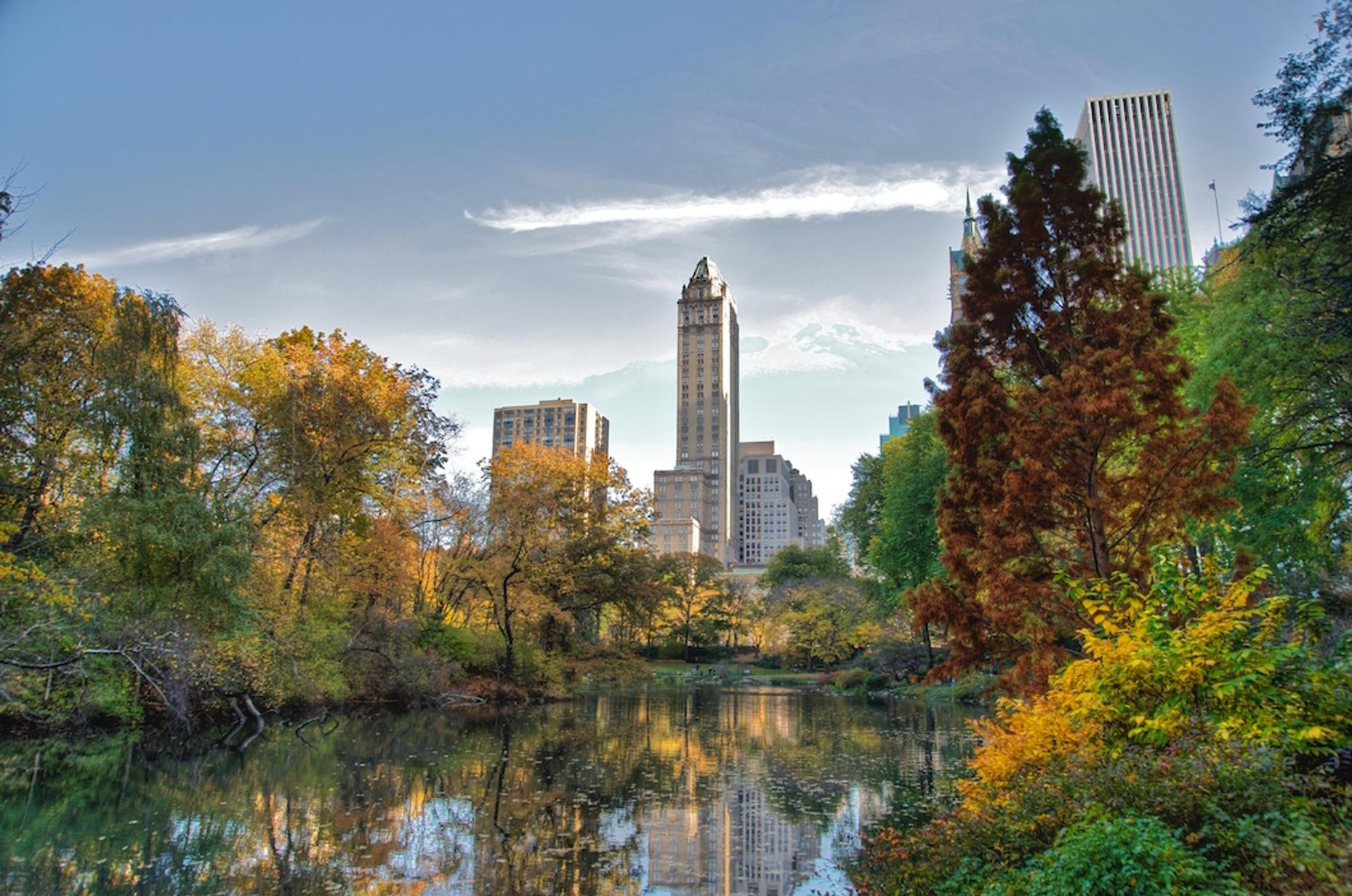 Two-Hour Central Park Walking Tour in NYC
