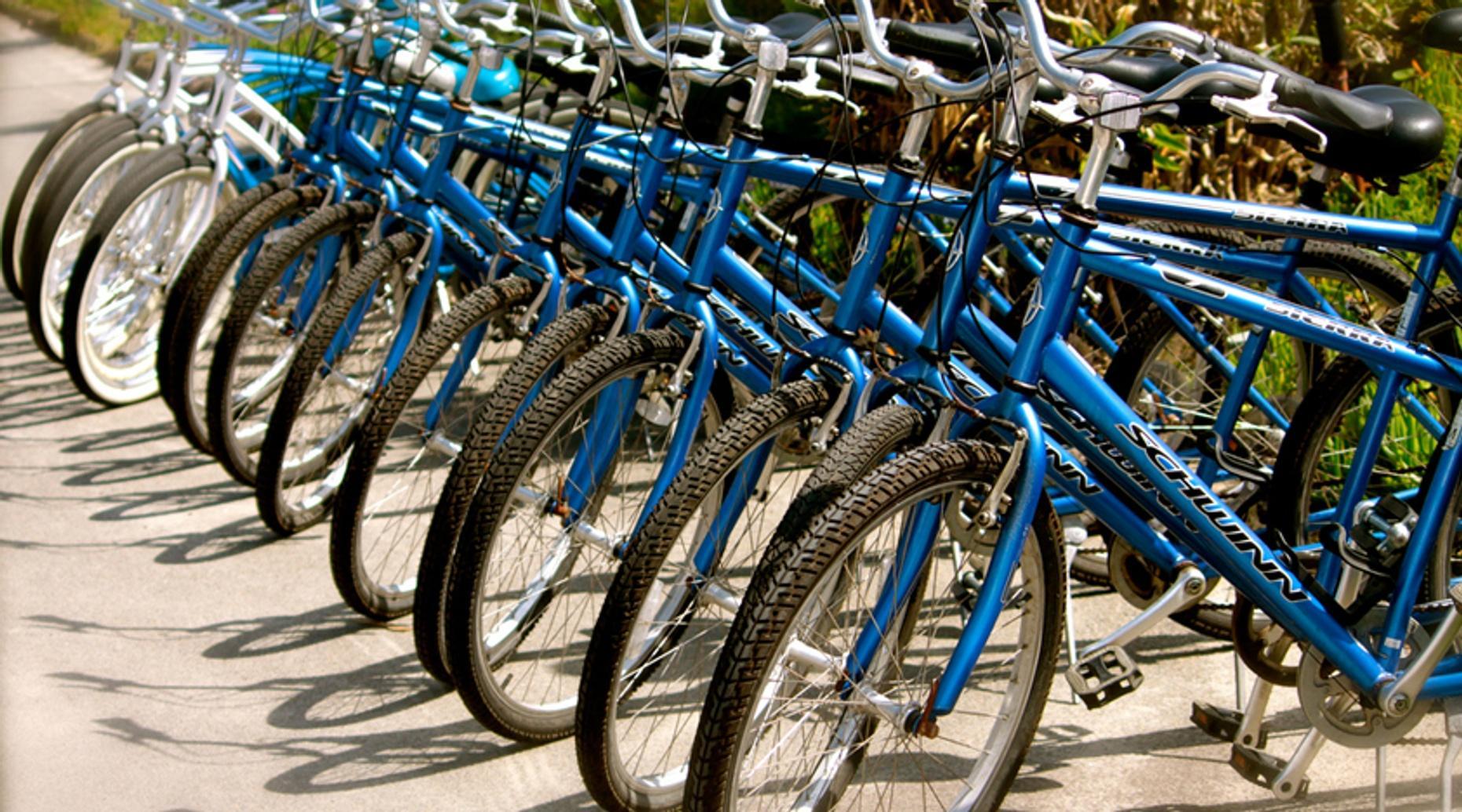 Biking Tour & Train Ride from Anchorage
