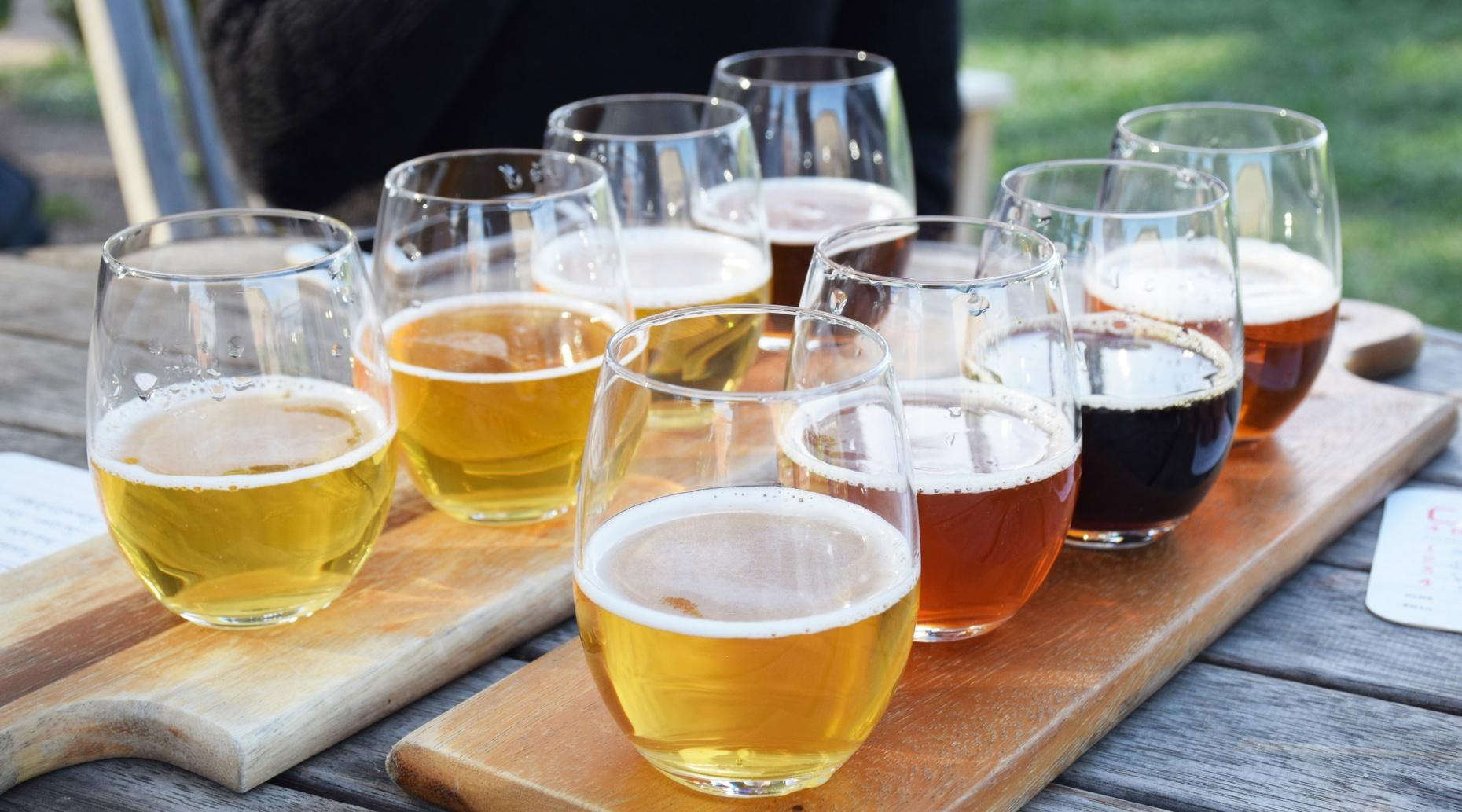 Sunday Beer Brunch Tour in Raleigh