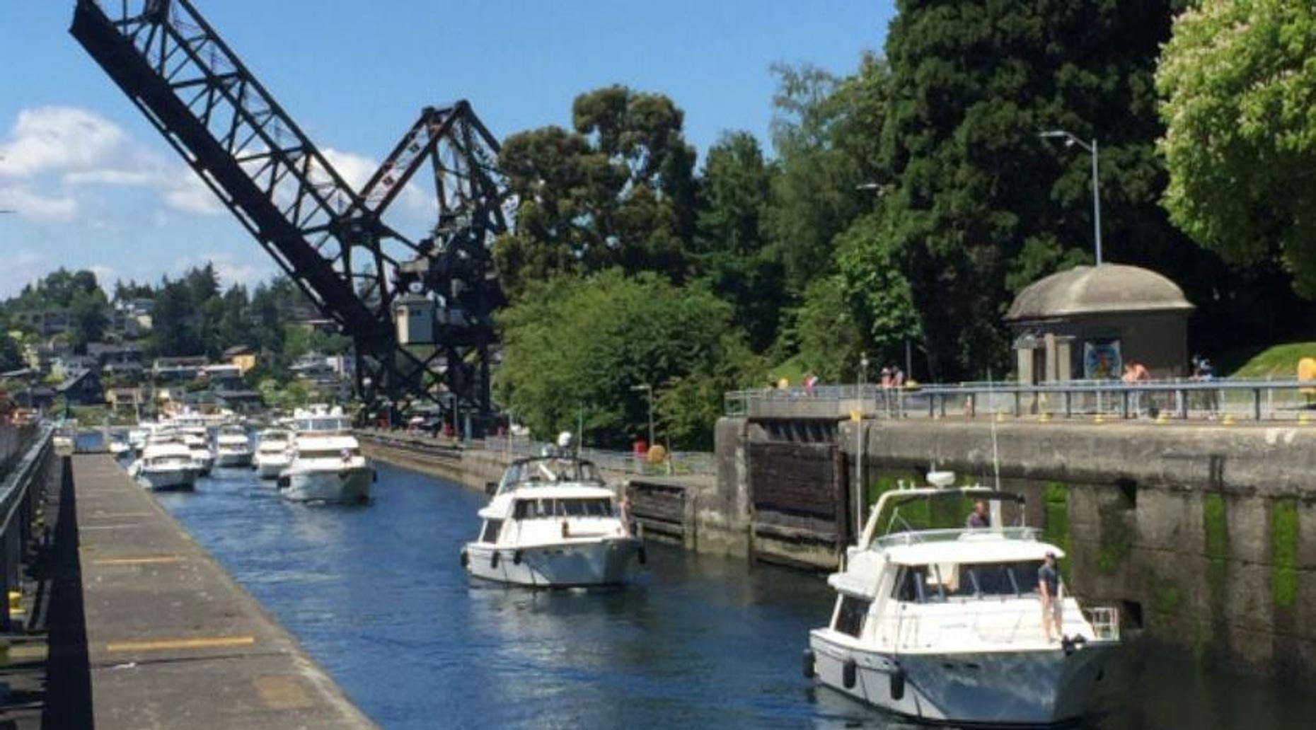 Private Ballard Locks, Gas Works Park and Houseboats Tour of Seattle