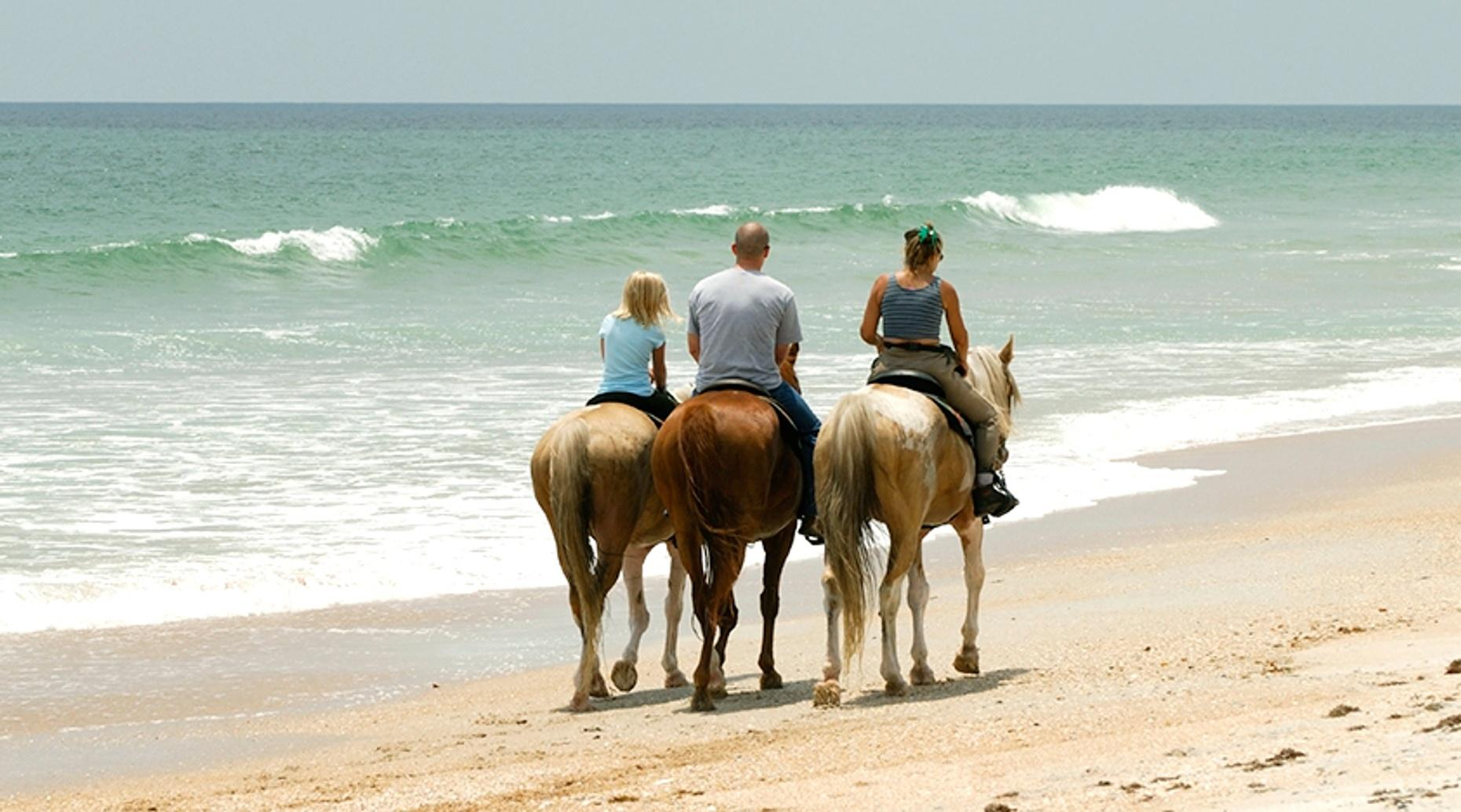 Private Wildcat Beach Horse Ride in Point Reyes
