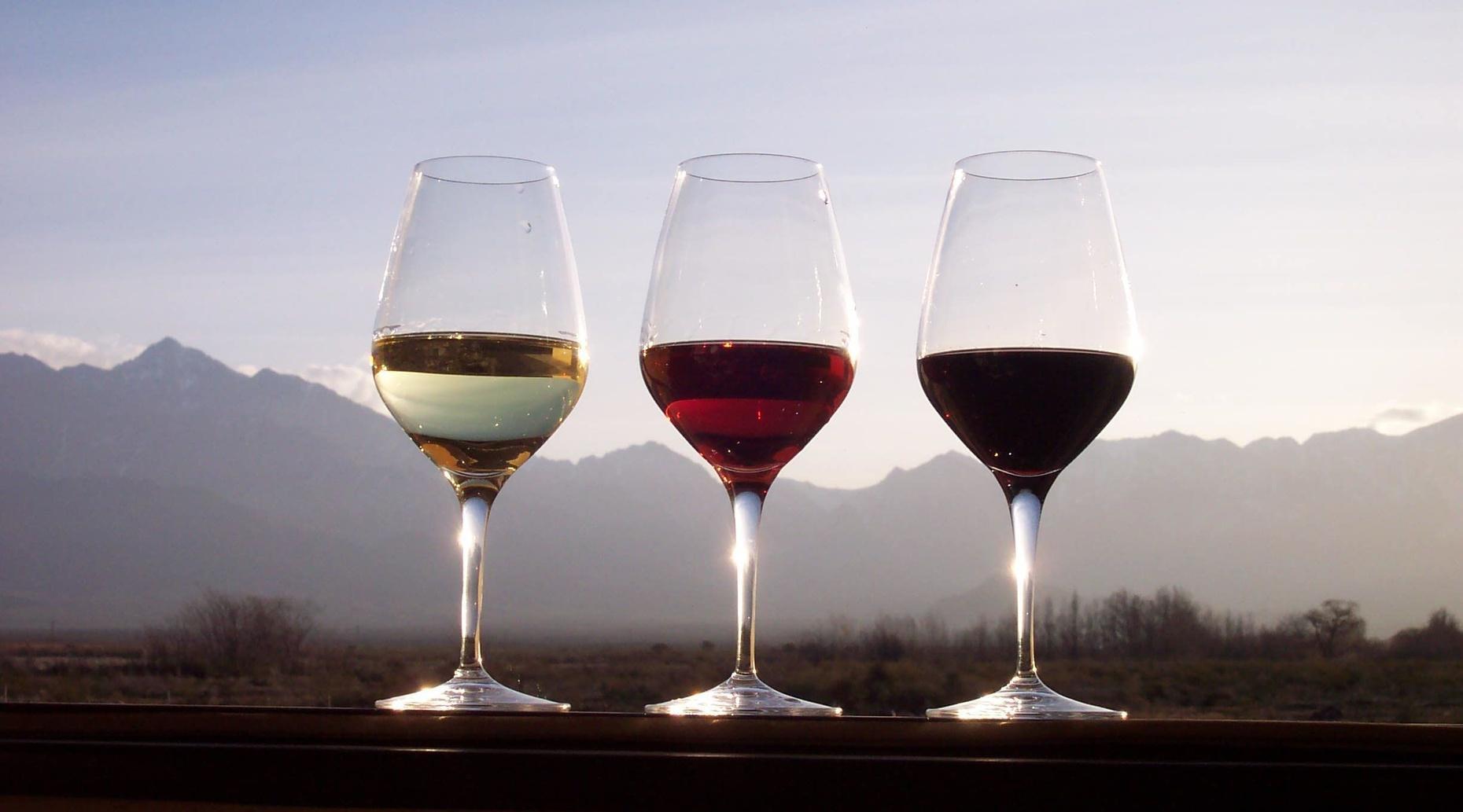 Douro Valley Tour & Wine Tasting from Porto