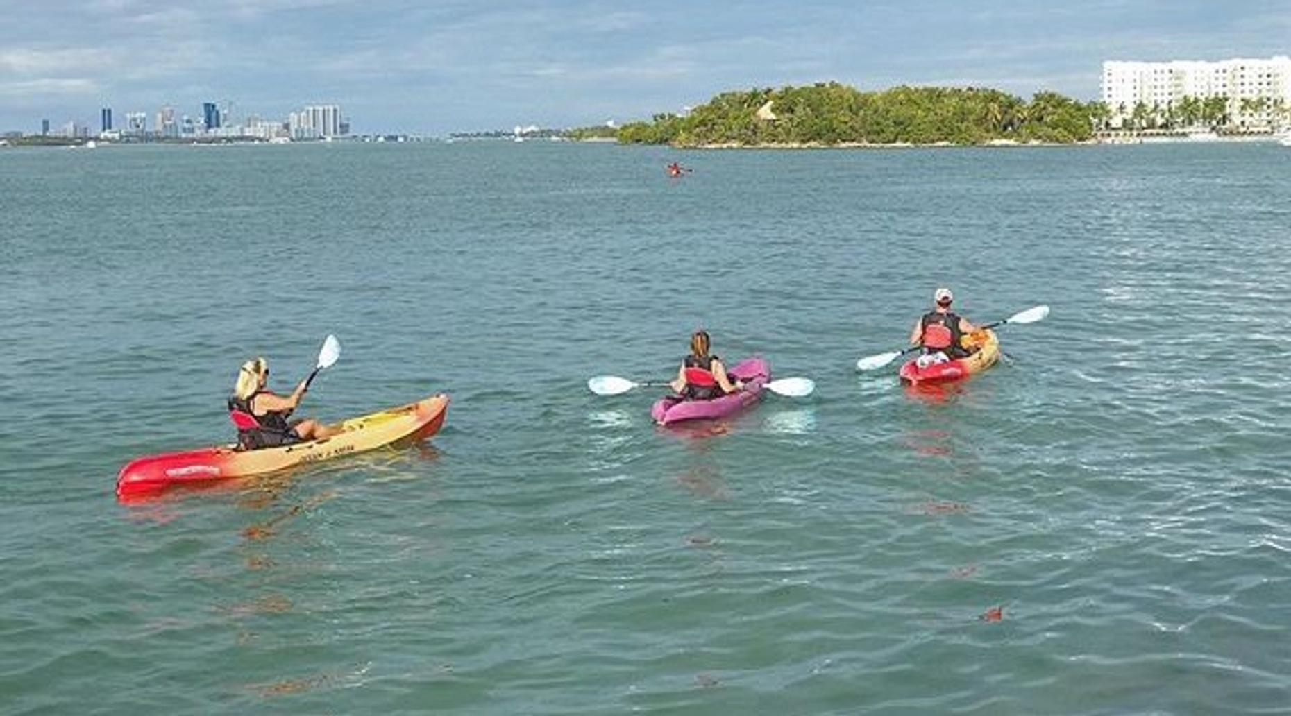 Two-Hour Single Kayak in Miami