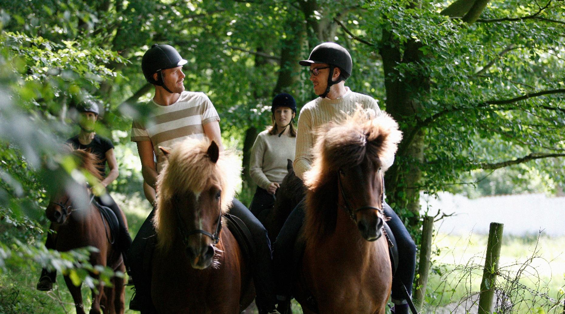 1-Hour Horseback Ride in Wunderlich Park
