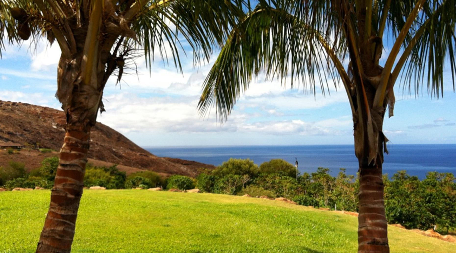 Deluxe Maui Farms and Photo Tour