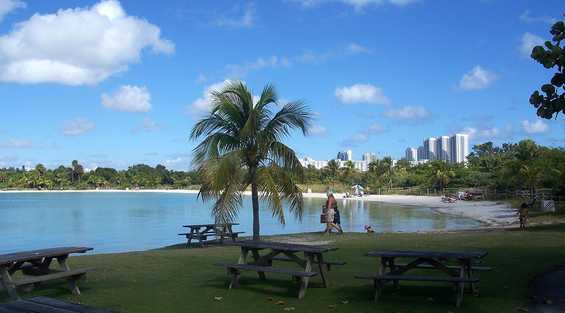 Stand-Up Paddleboard and BBQ at Oleta River Park