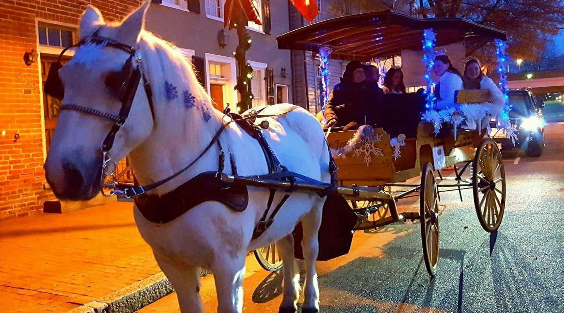 Small Group Christmas Carriage Tour