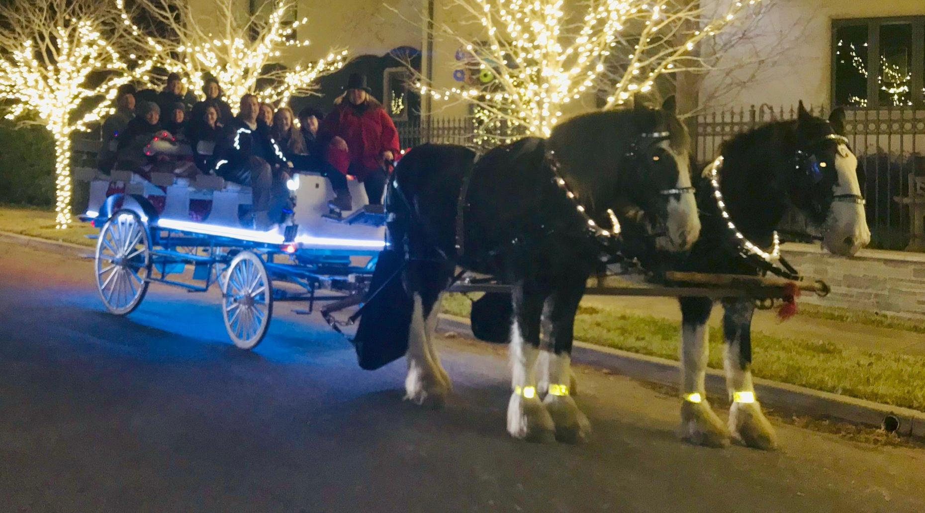 12-16 Passenger Christmas Carriage Tour in Highland Park