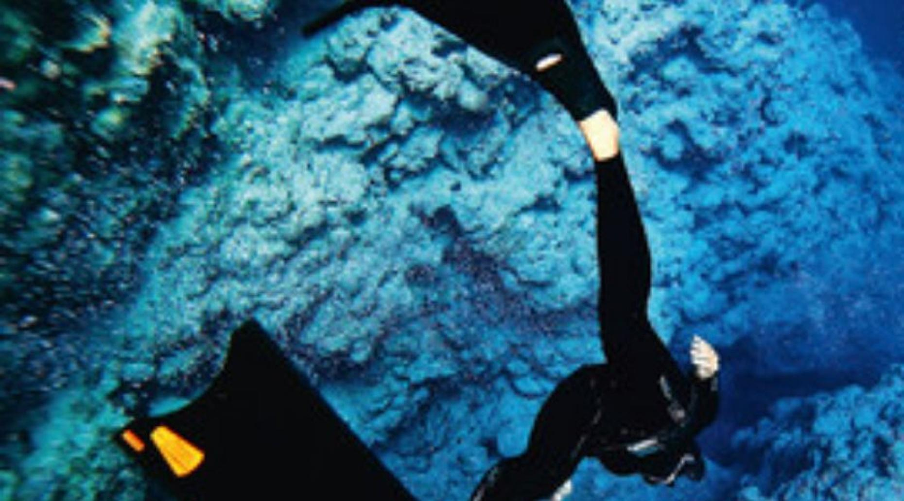 Basic Freediving Course in Cozumel