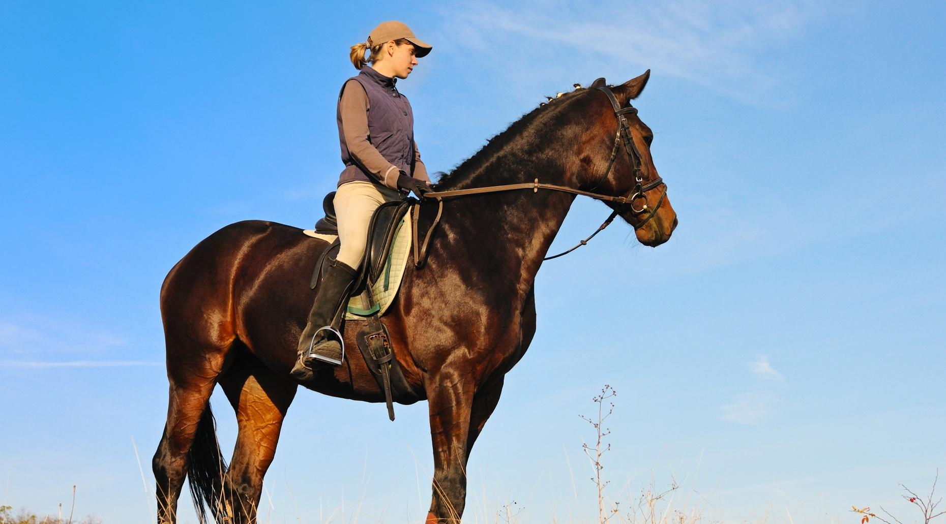 90-Minute Morning Trail Ride in Crowley