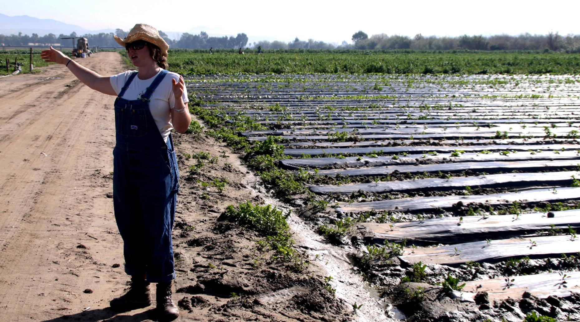 Private Organic Farm Tour in San Diego