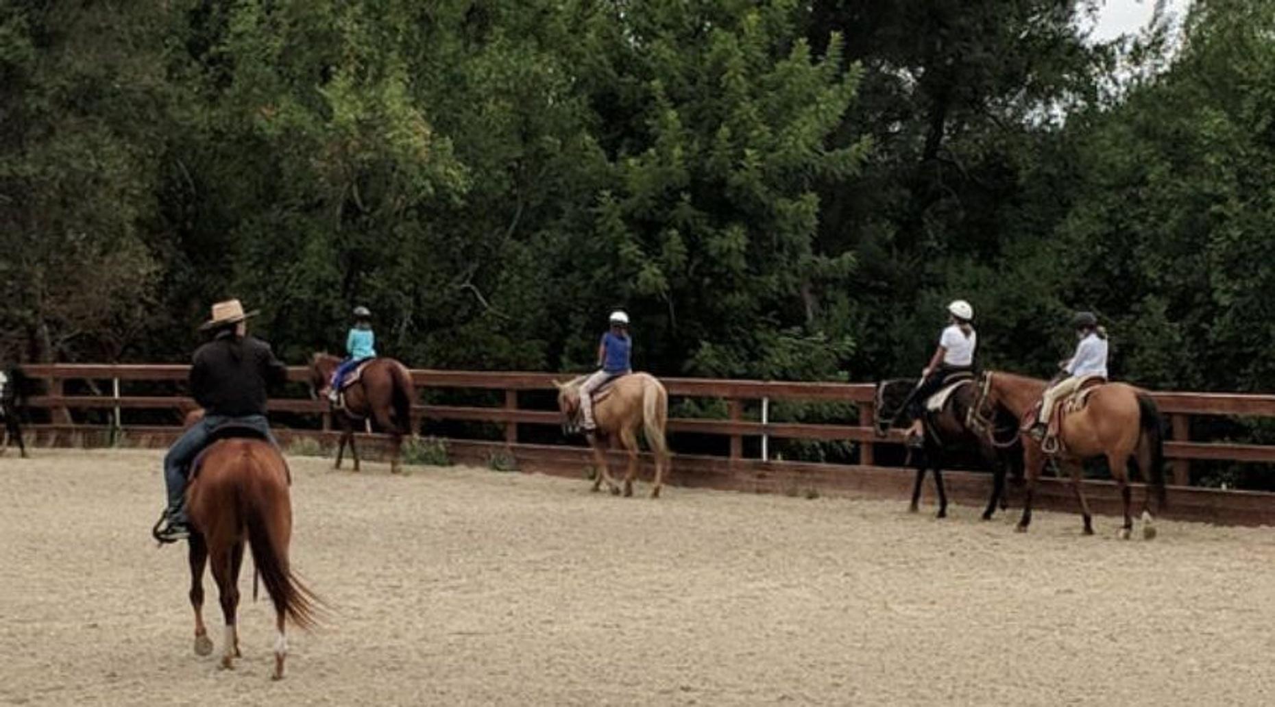 1-Hour Horseback Riding Lesson at Golden Gate Park