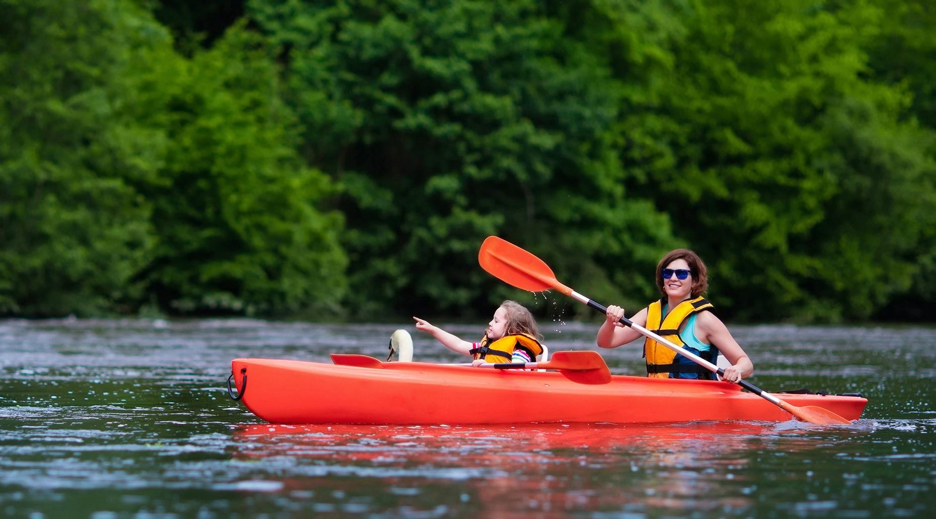 Back Creek Paddling Adventure in Salisbury