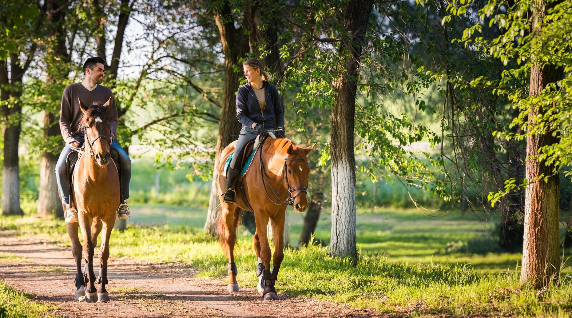 Private Horseback Rides in St. Clair