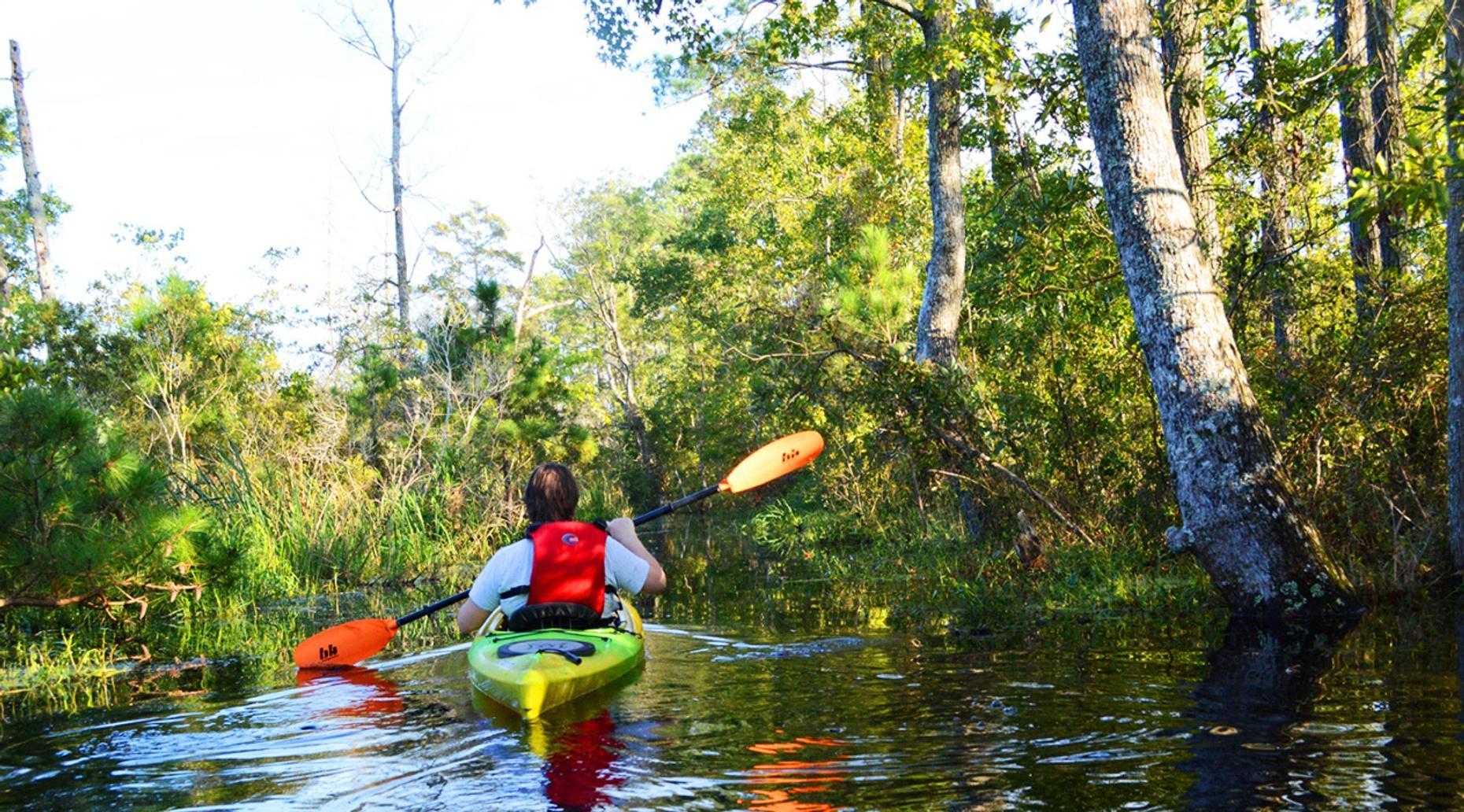 Full-Day Fossil Kayaking Adventure