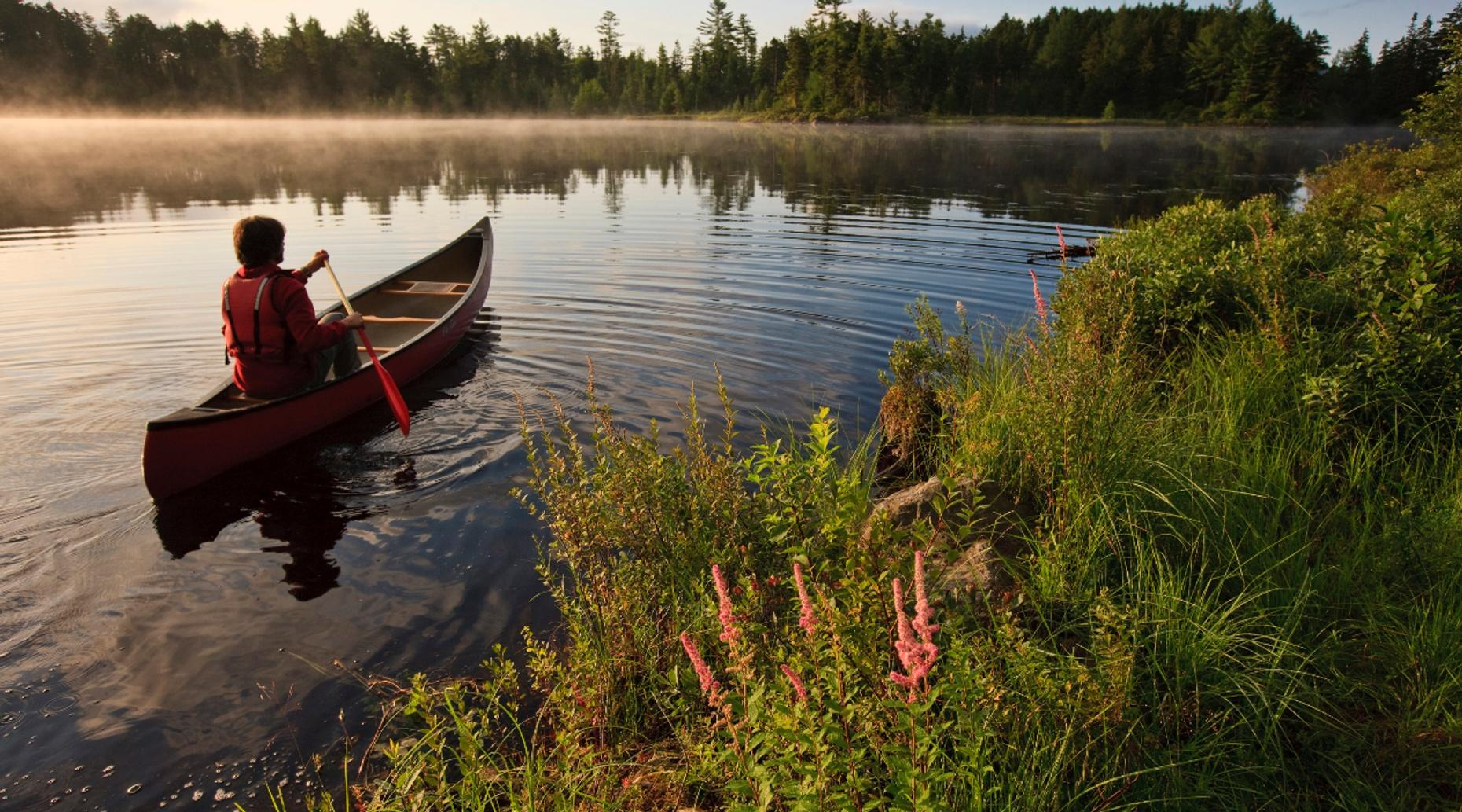 Two-Hour North Shore Canoe Tour in Duluth