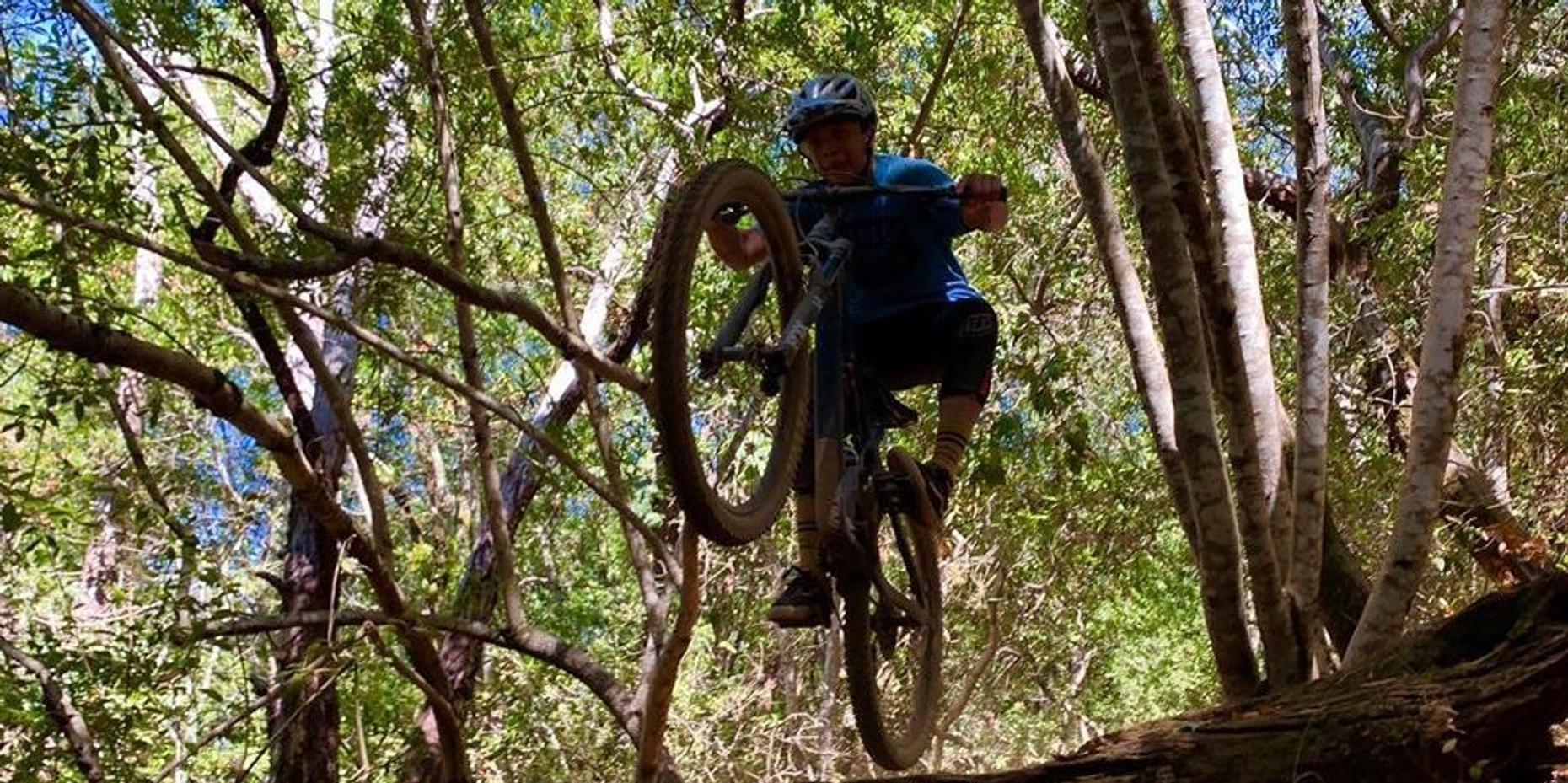 Hybrid Bike Rental in Sanoma County