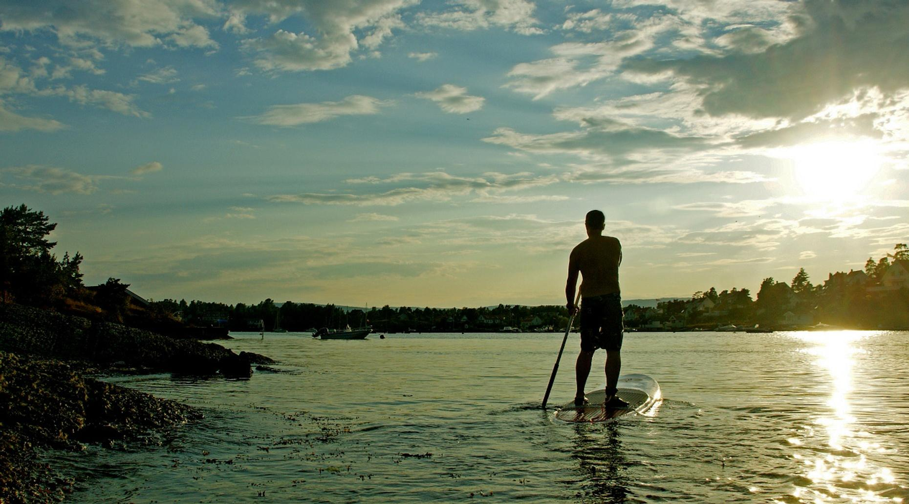 Afternoon Stand-Up Paddleboard Ecotour in Melbourne Beach