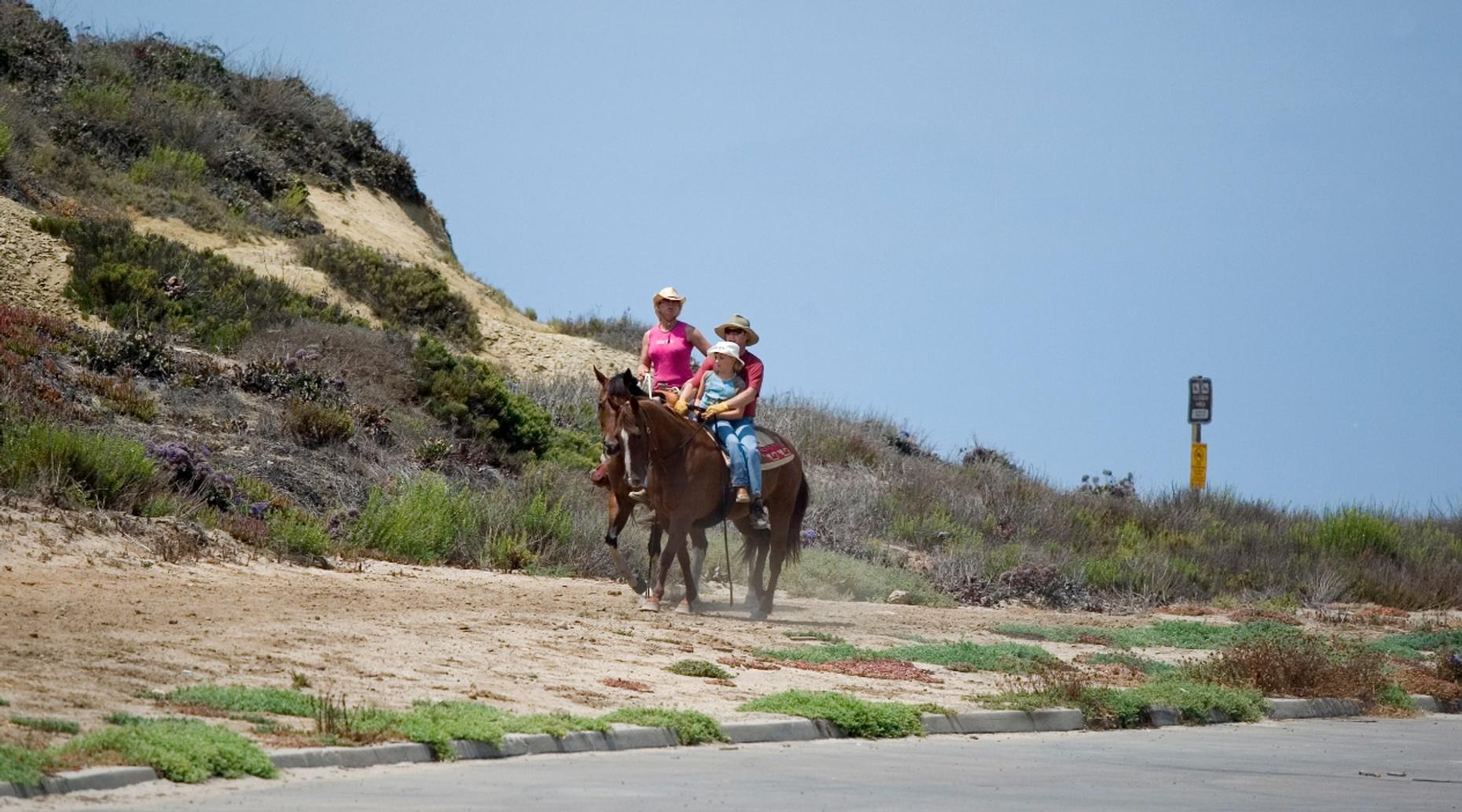 12-Hour Horseback Riding Package in Rockwall