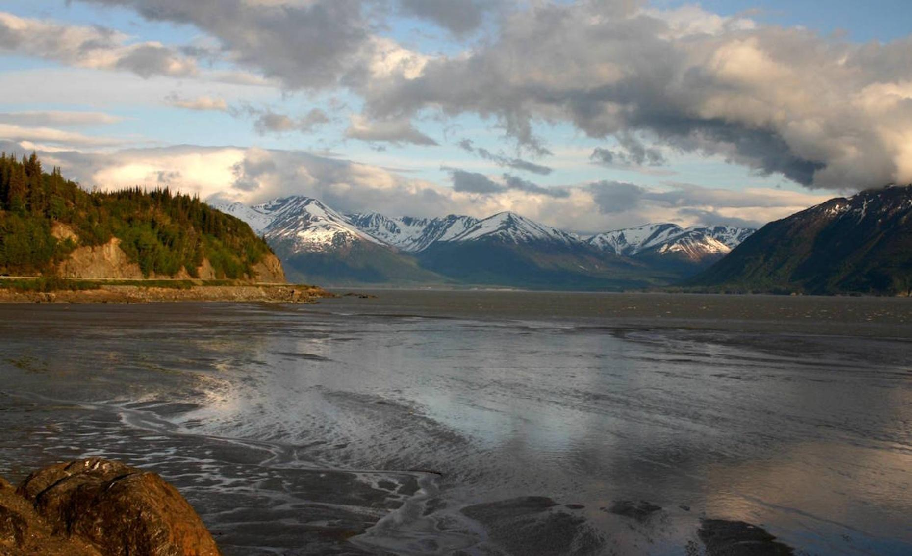 Half-Day Bus Tour from Anchorage to Whittier