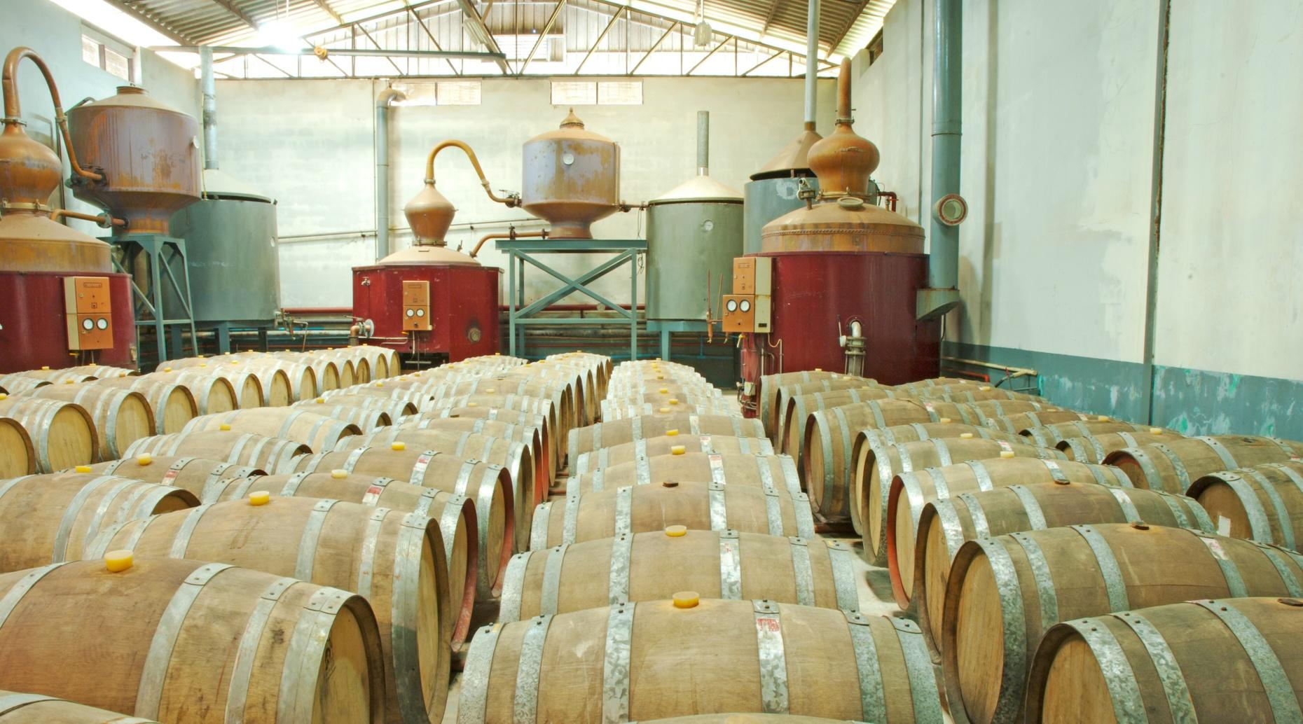 Texas Hill Country Distillery Tour in Dripping Springs