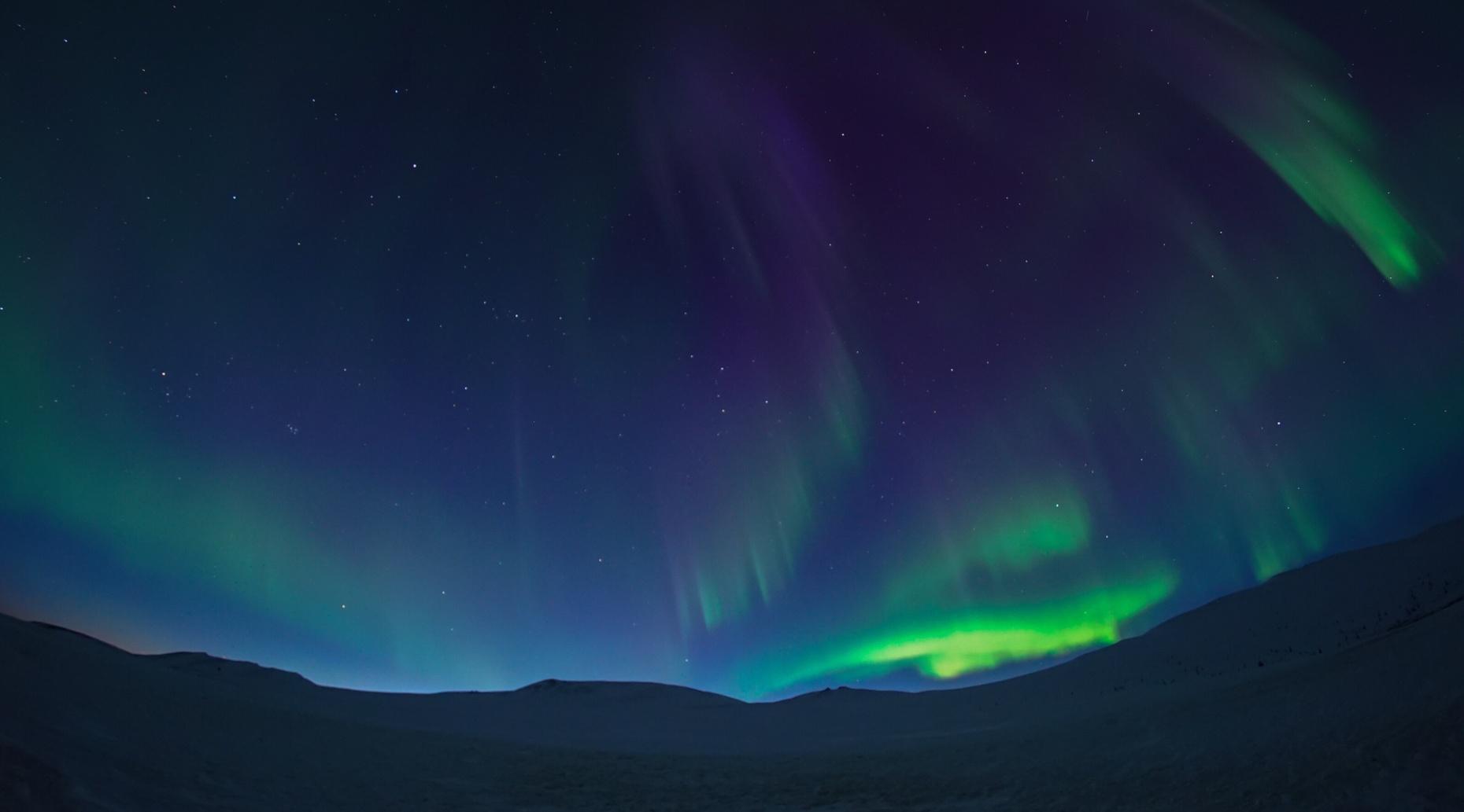 Aurora Seeker Tour from Fairbanks