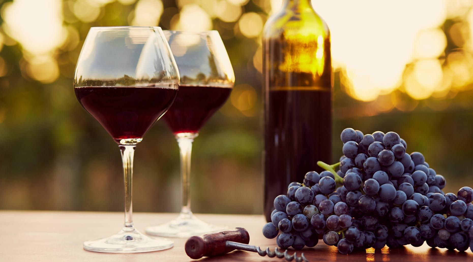 Portuguese Wine Experience in Porto