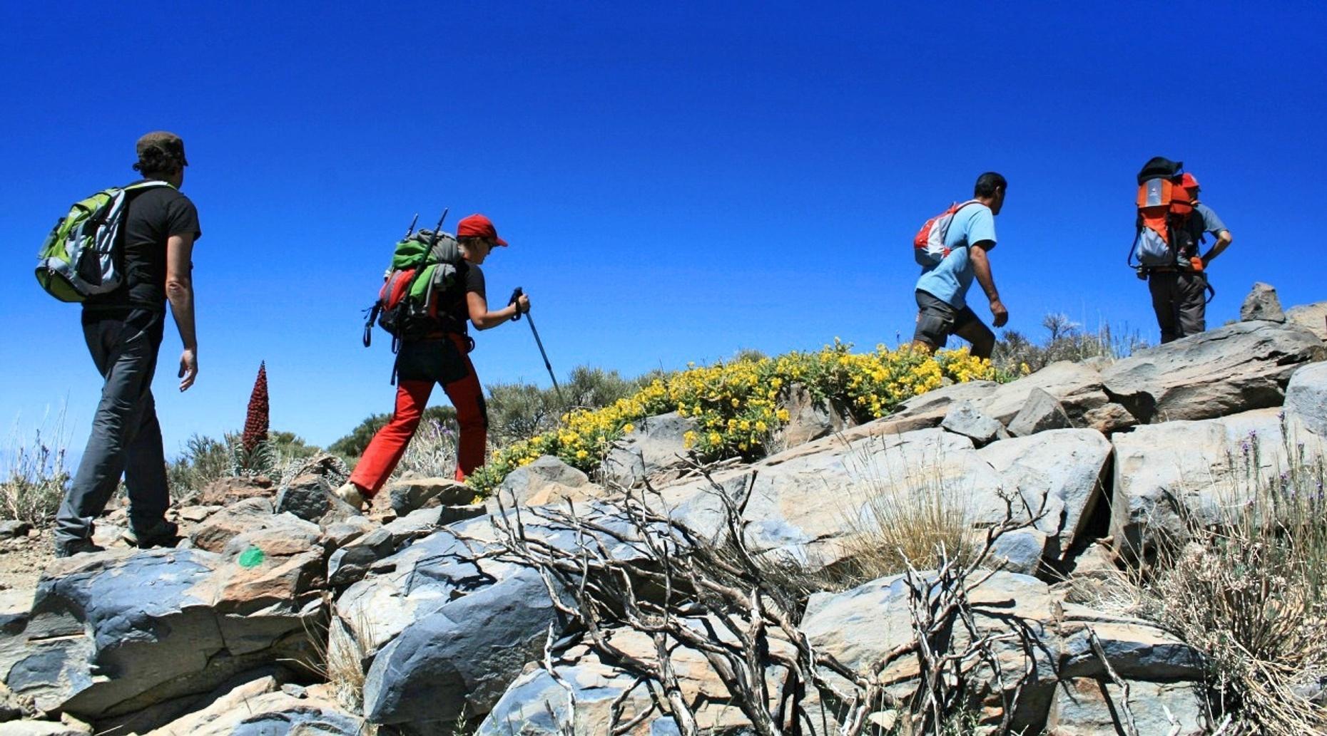 Choquequirao & Machu Picchu Five-Day Tour
