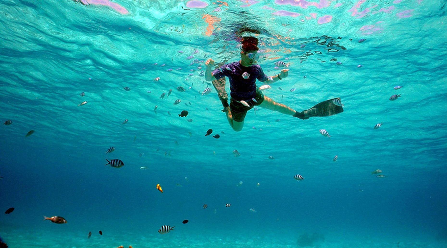 Inclusive Snorkeling Tour of Marietas Islands