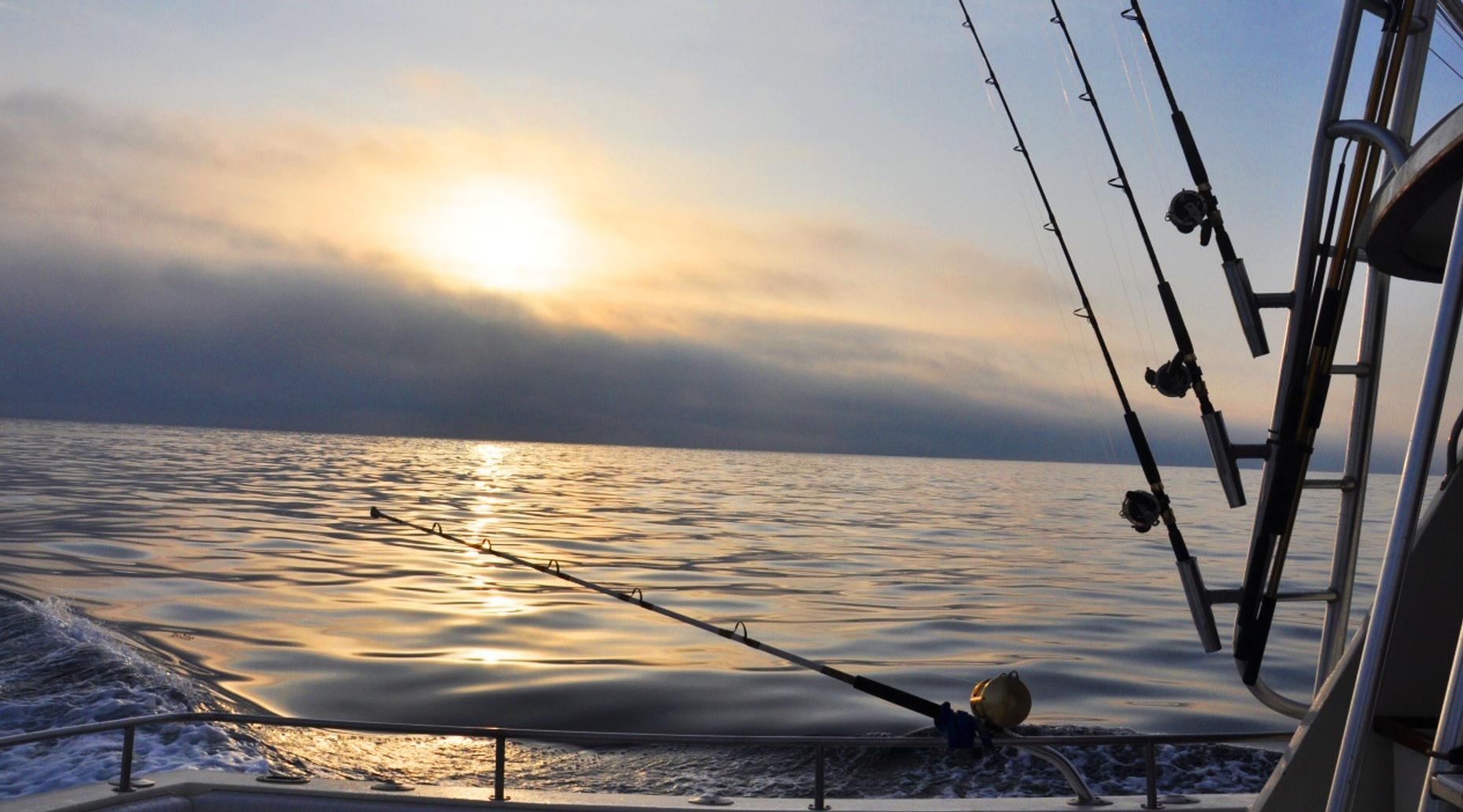 Private Nighttime Swordfishing Trip in Hollywood