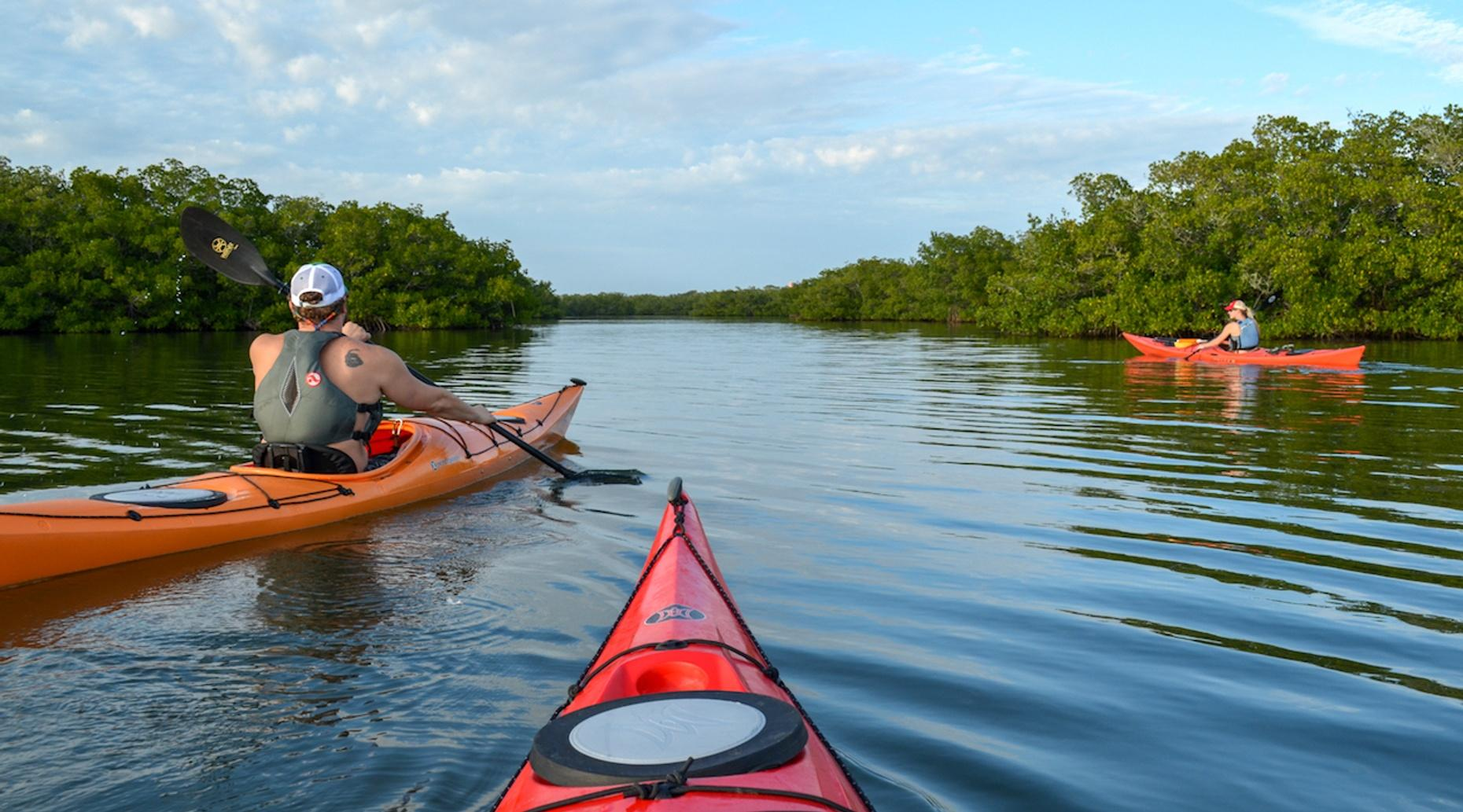 2-Hour Cocoa Beach Eco Kayak Tour