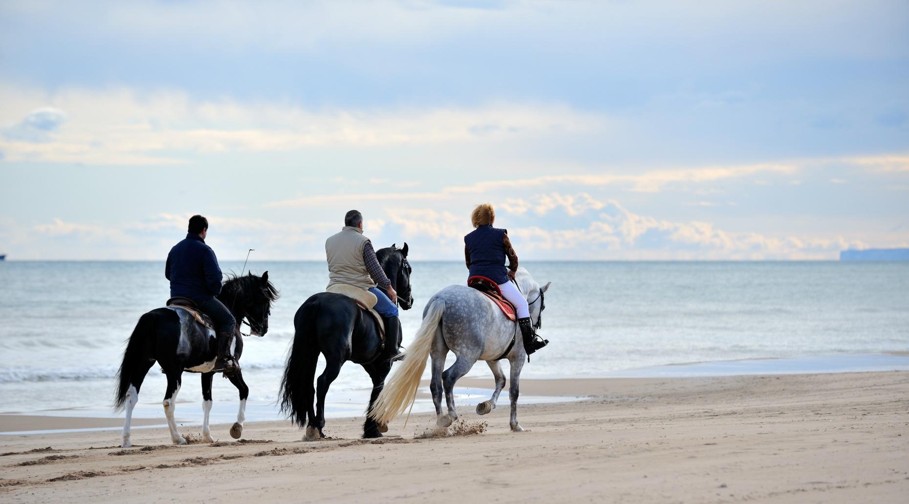 90-Minute Beach Adventure on Horseback in San Diego