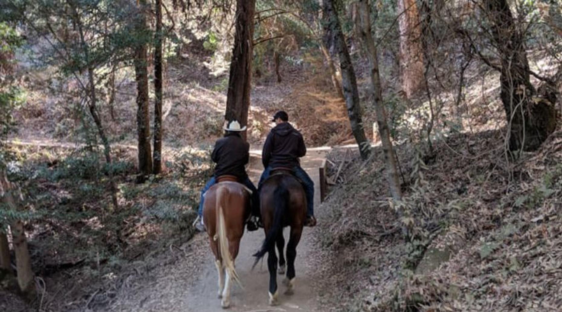 1-Hour Horseback Ride Tour at Golden Gate Park in San Francisco
