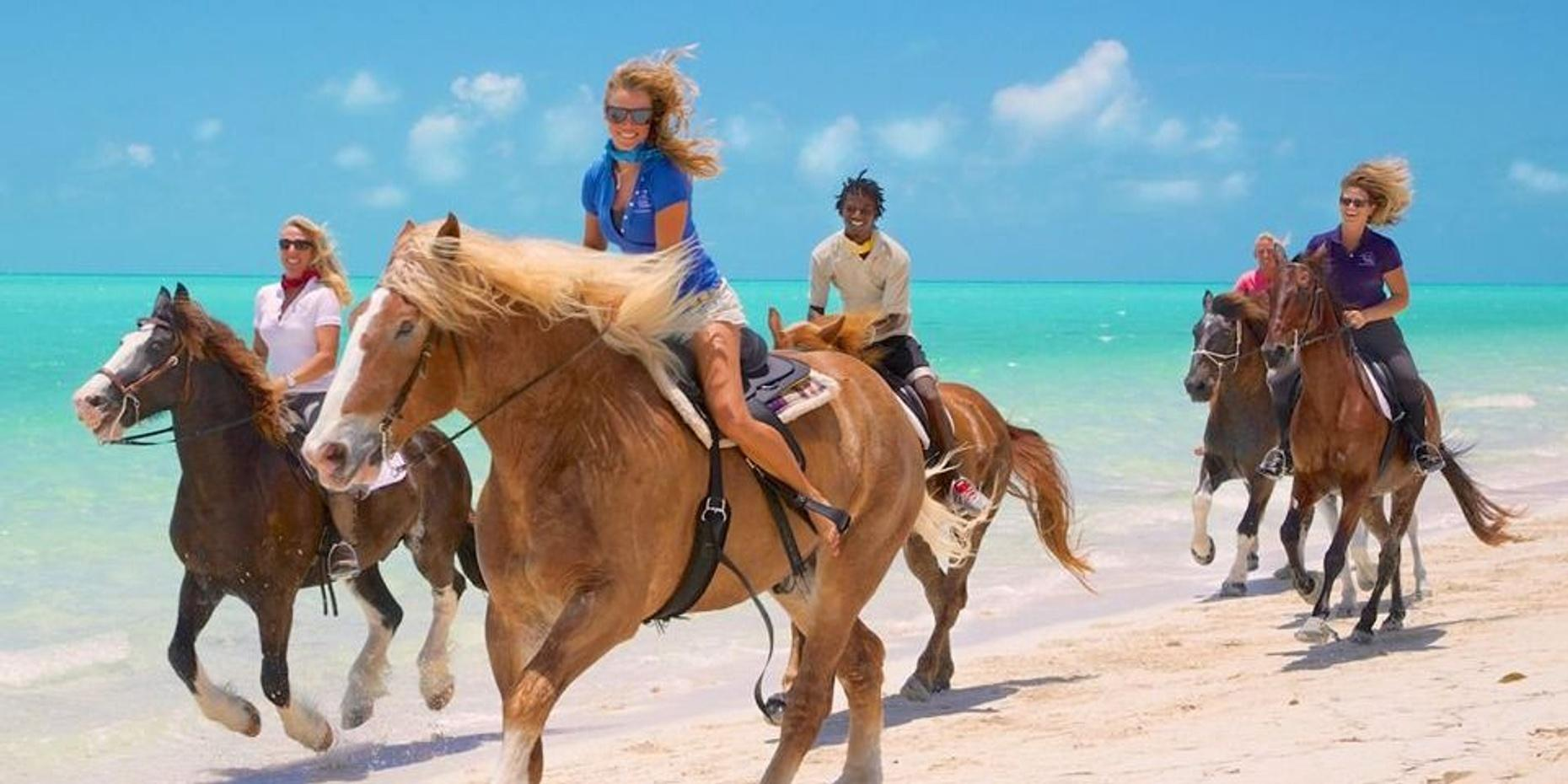 One Hour Private Horseback Ride on the Beach in Turks and Caicos