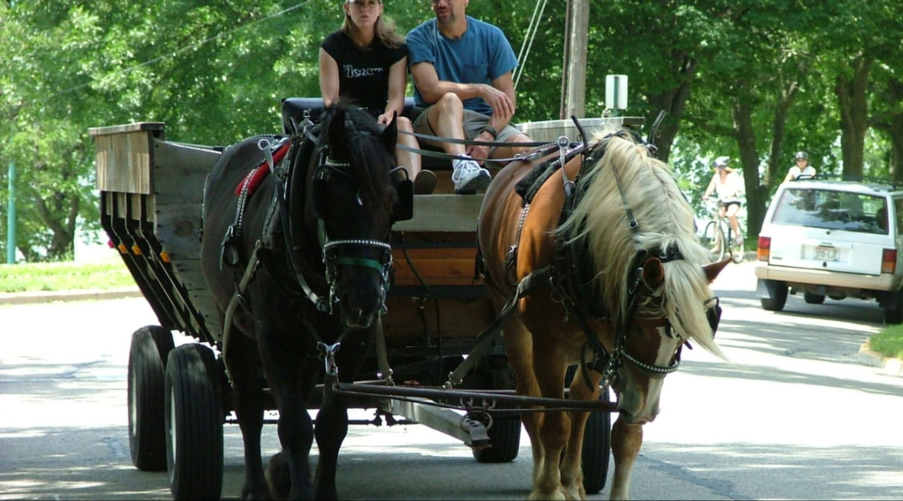 Guided Small Wagon Ride in Bend