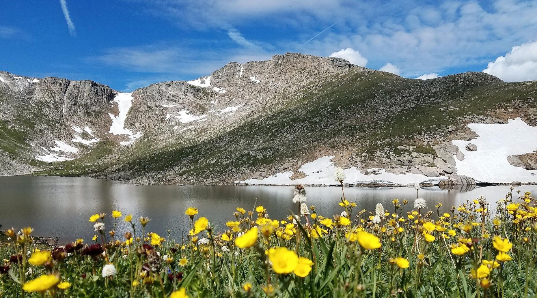 Summer Mountain Summit Mt. Evans Tour