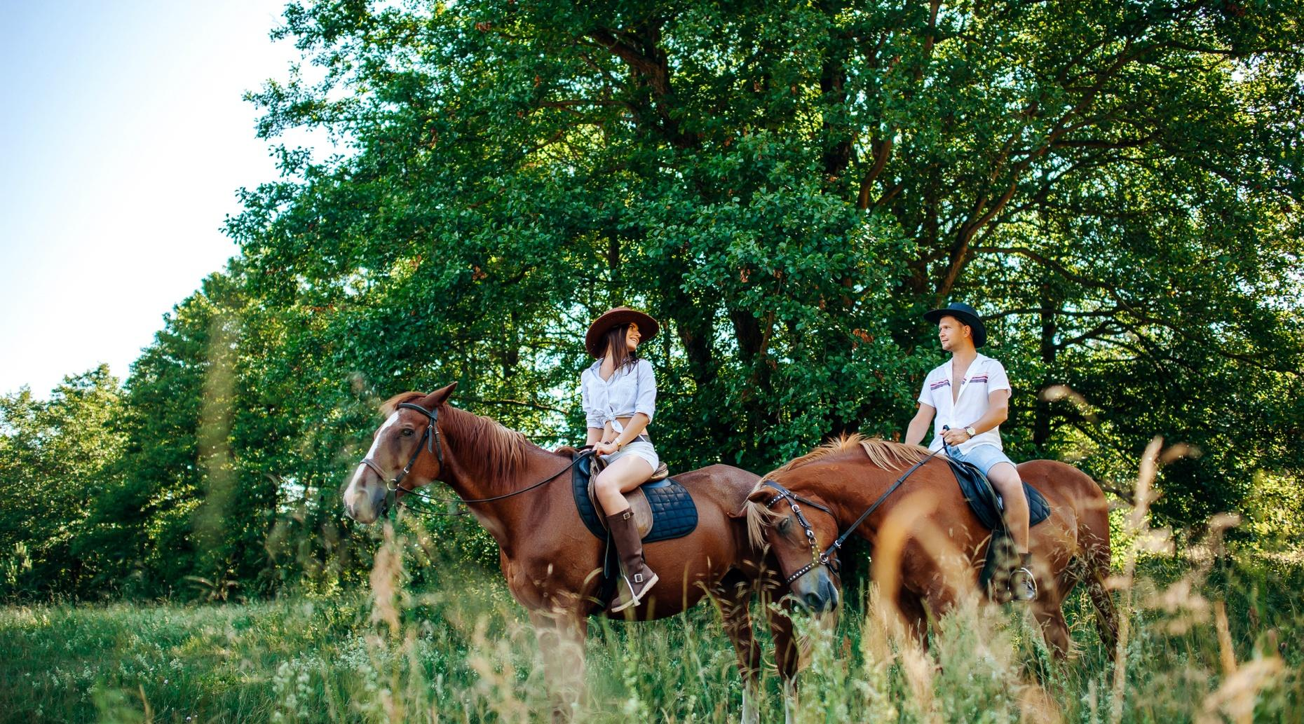 Two-Hour Advanced Horseback Trail Ride from Rockwall