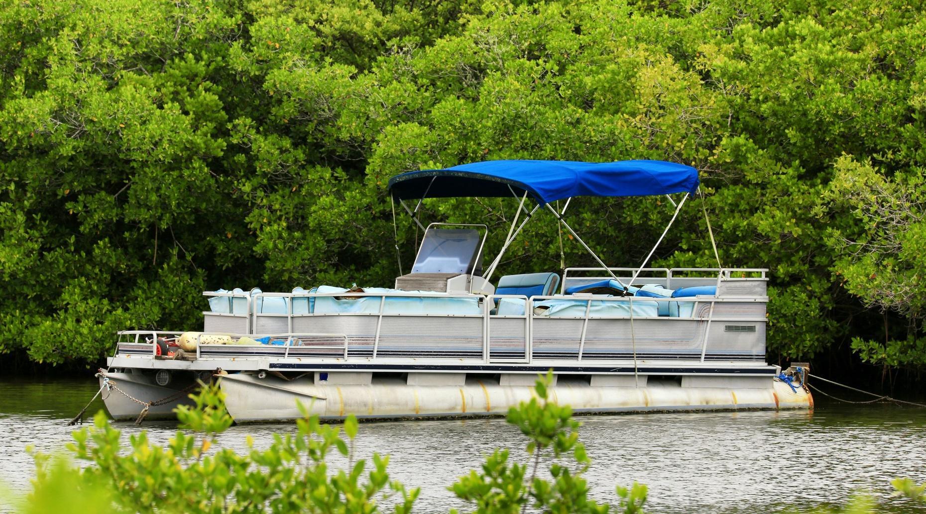 Four-Hour Pontoon Boat Rental in Crystal River