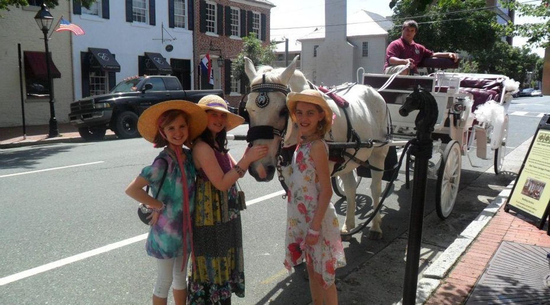 Public Group Carriage Tour of Fredericksburg