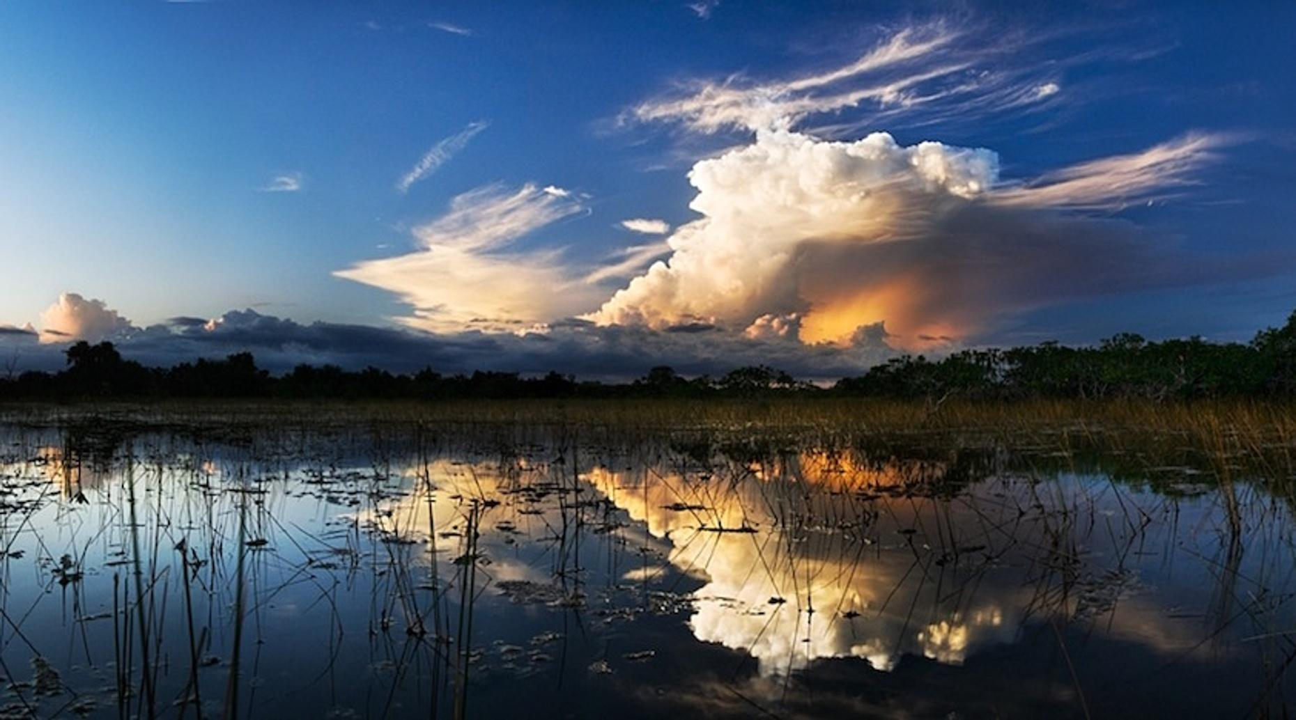 Private Four-Hour Everglades Airboat Tour
